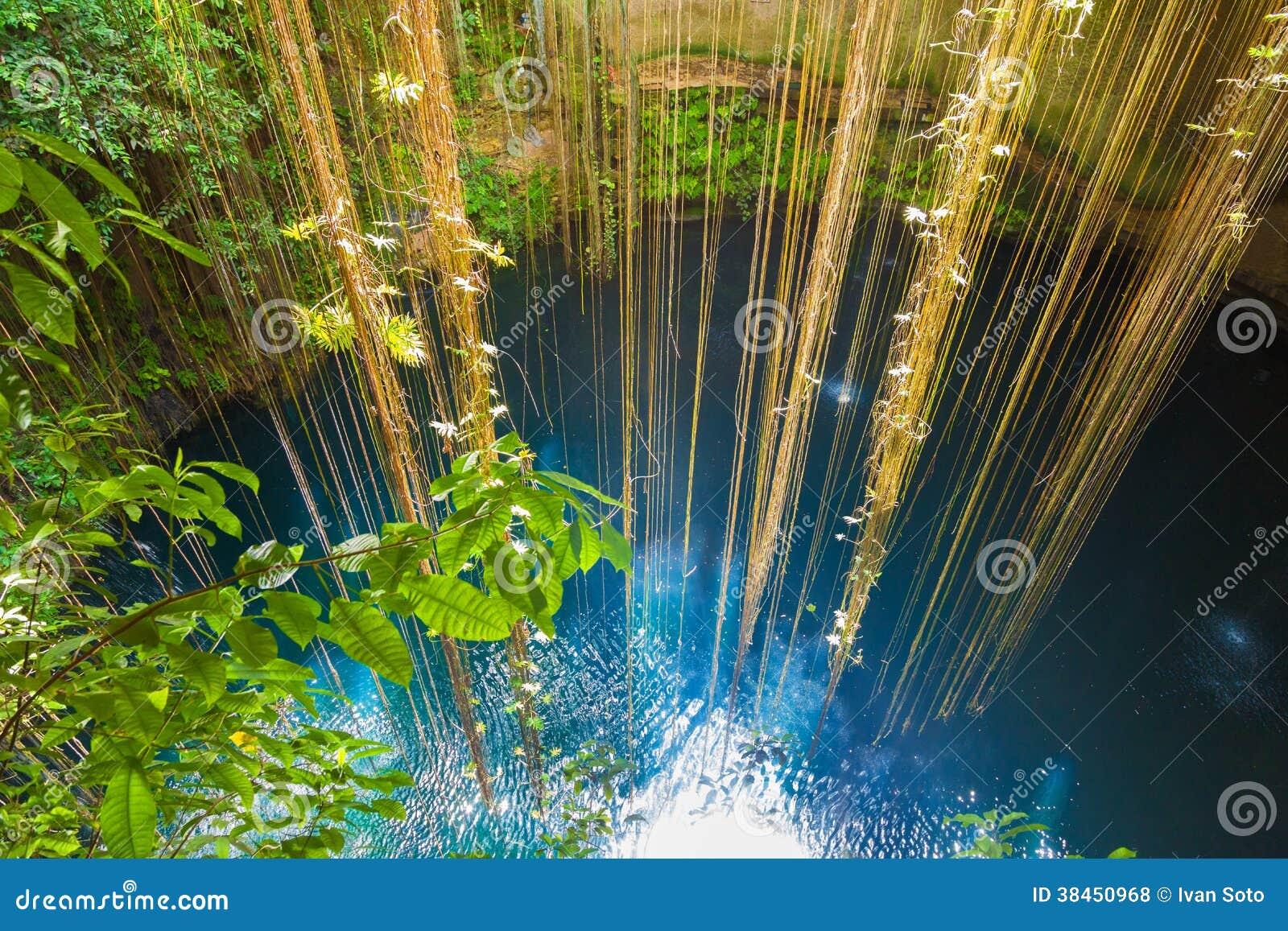Ik kil cenote near chichen itza mexico royalty free Chichen itza mexico natural swimming pool