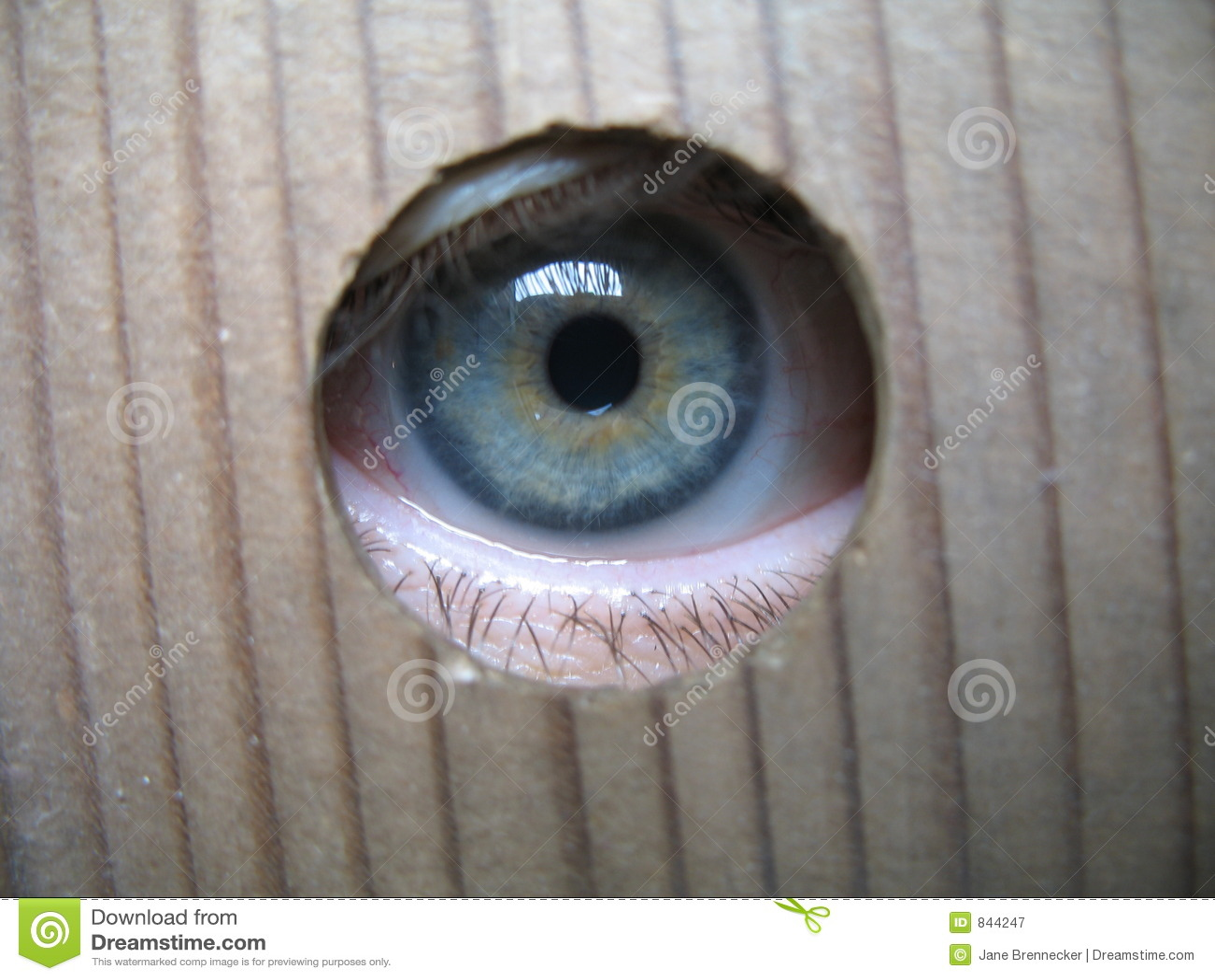 Ik spioneer