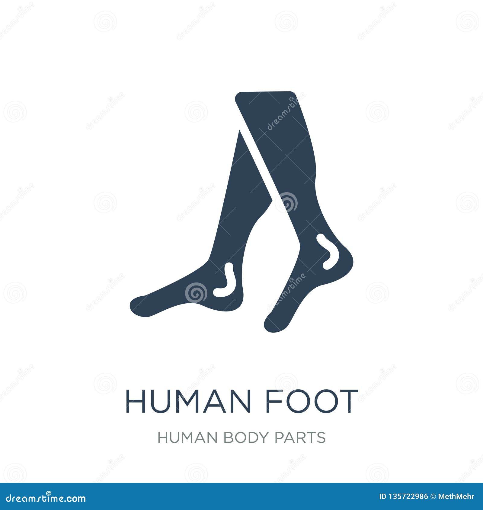 Ikone des menschlichen Fußes in der modischen Entwurfsart Ikone des menschlichen Fußes lokalisiert auf weißem Hintergrund Vektori