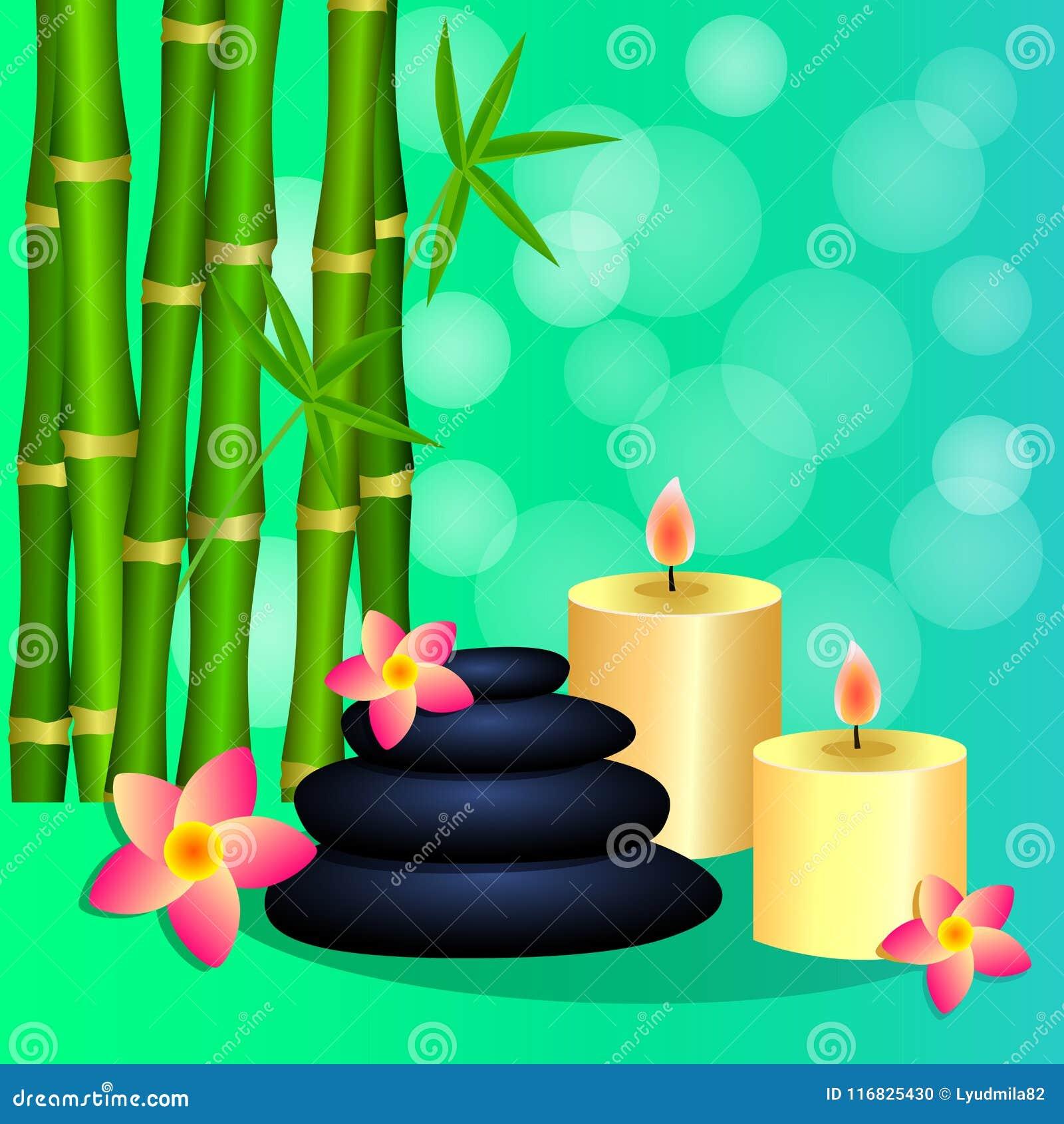 Il bambù esamina in controluce le pietre della stazione termale per l opuscolo dell opuscolo dell insegna, posta