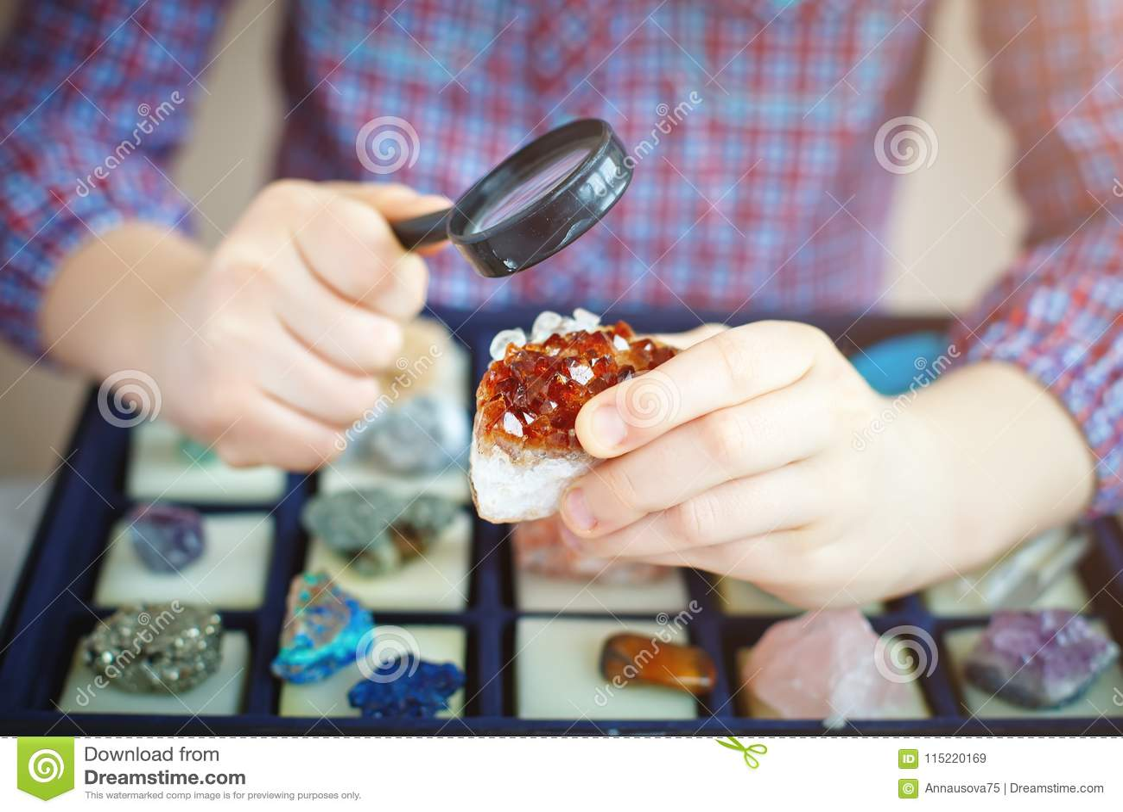 Il bambino esamina la sua raccolta dei minerali Il piccolo geologo