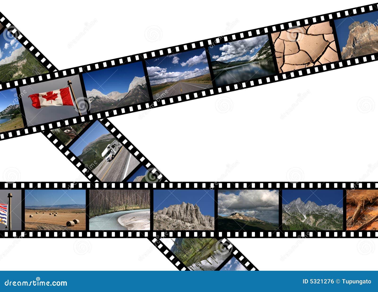 Download Il Canada fotografia stock. Immagine di telaio, naturalizzato - 5321276