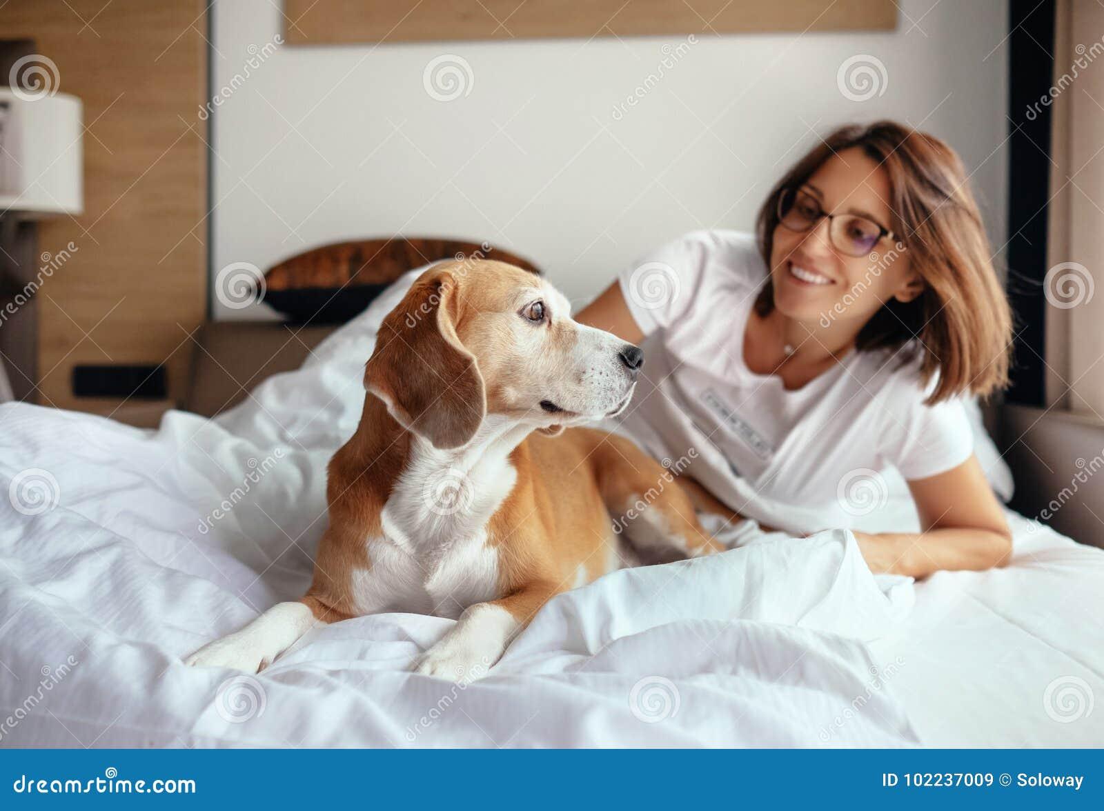 Il cane del cane da lepre e della donna sveglia e si incontra il nuovo giorno a letto