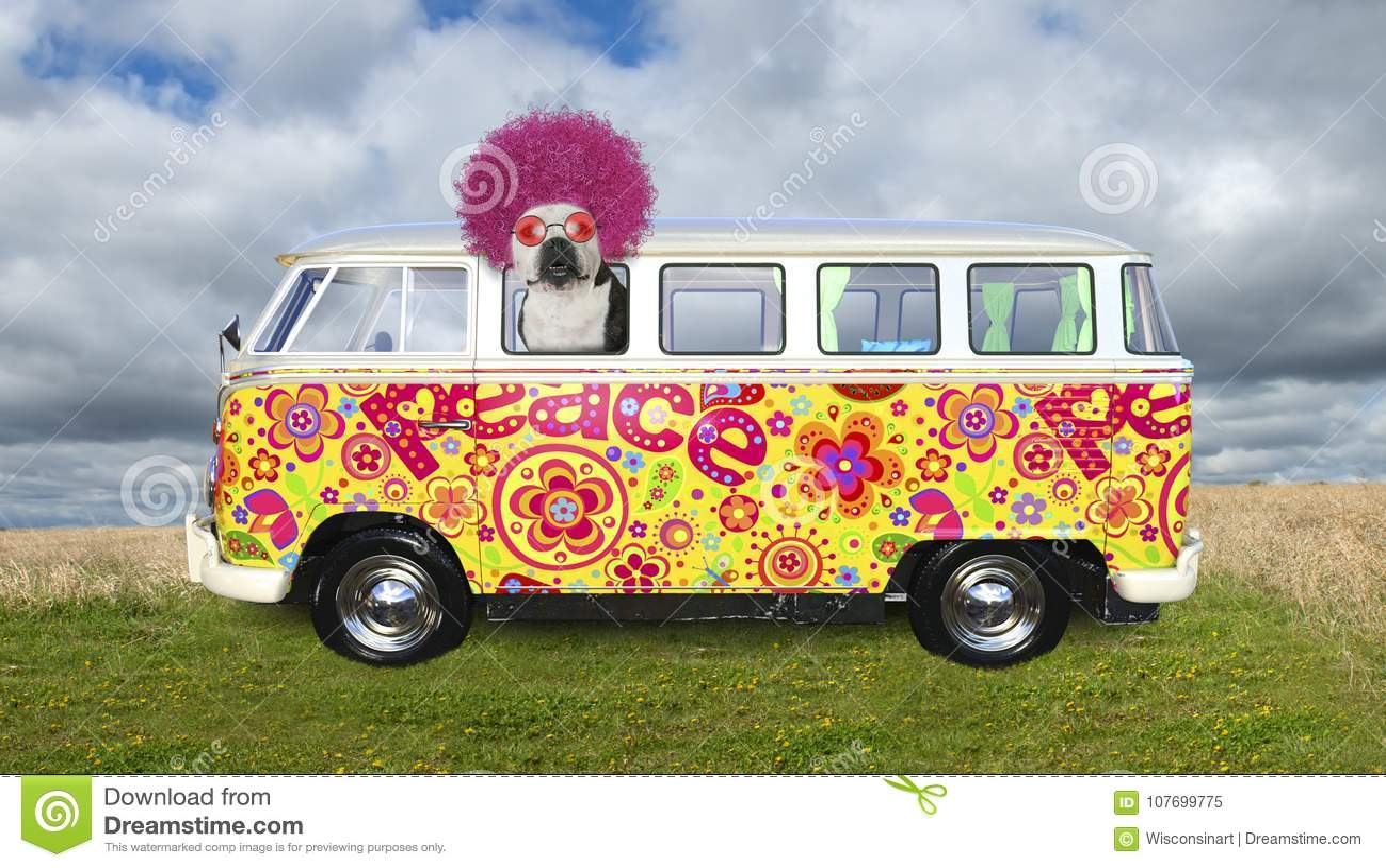 Il cane divertente di hippy, VW trasporta