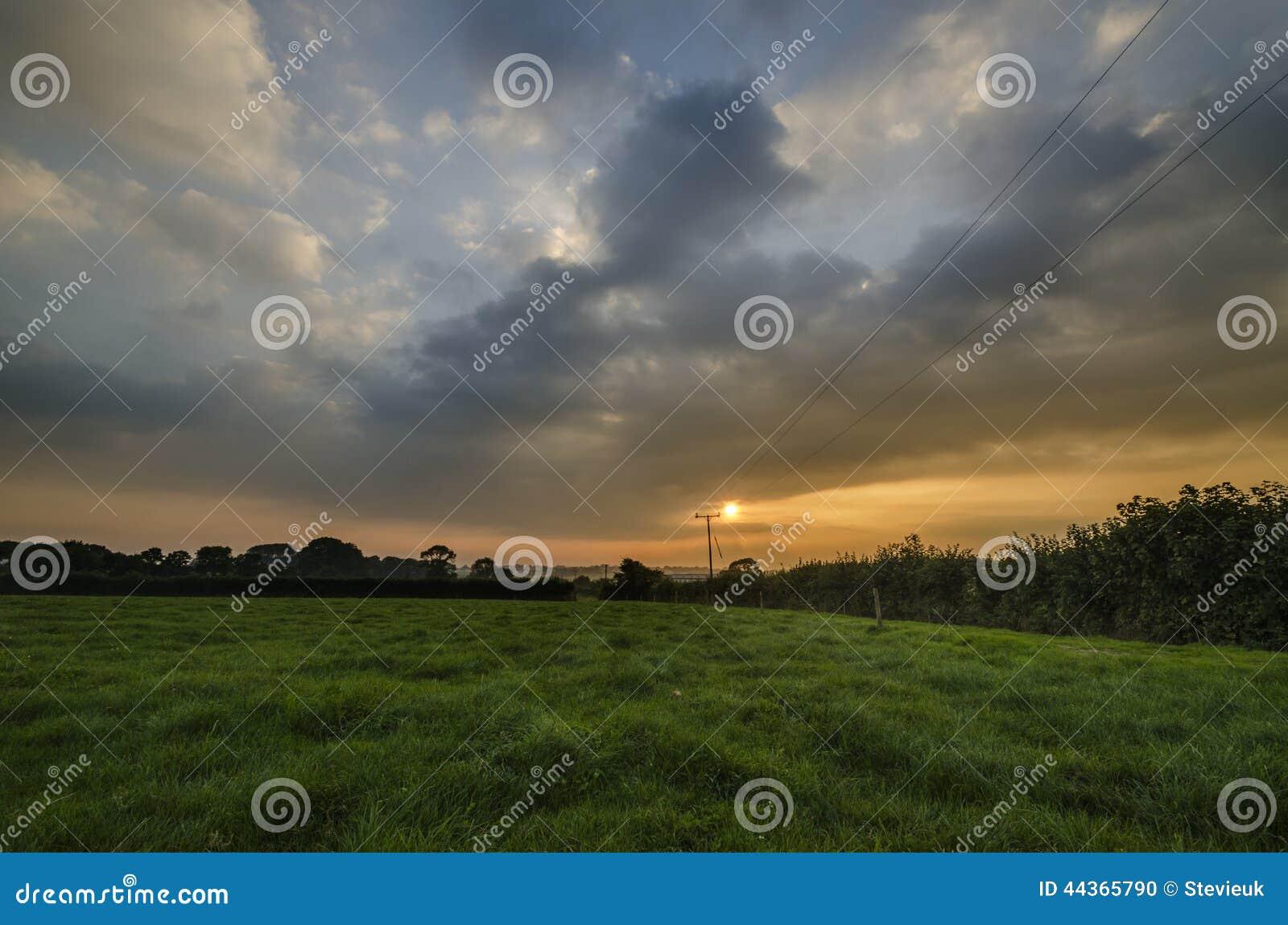Il cereale insegue nei campi dell azienda agricola con il bello cielo del tramonto, Cornovaglia, Regno Unito