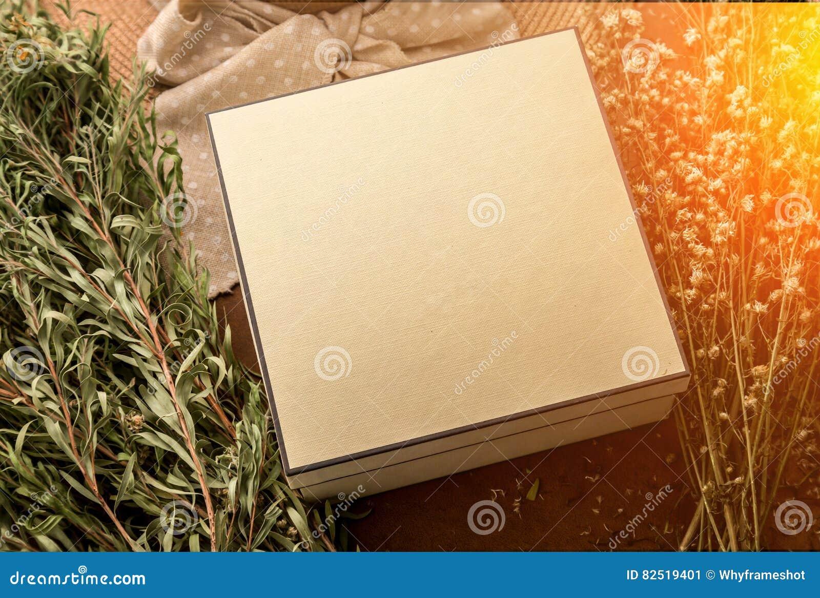 Il concetto di vigilia del ` s di Newyear con la scatola attuale ed il viaggio dell estate farciscono la o