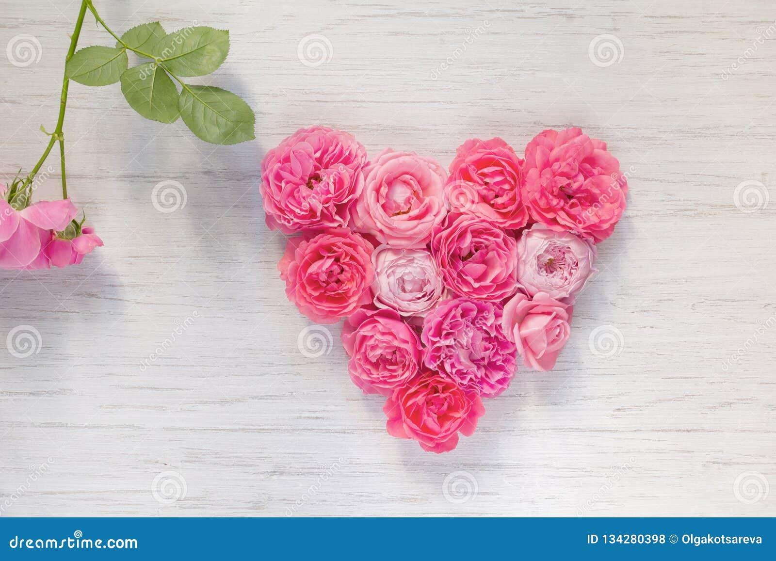 Il cuore del rosa d annata è aumentato fiori su fondo e sul ramo di legno bianchi con la foglia verde, vista superiore