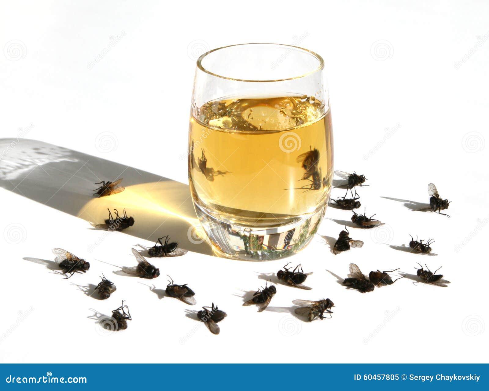 Il danno di alcool