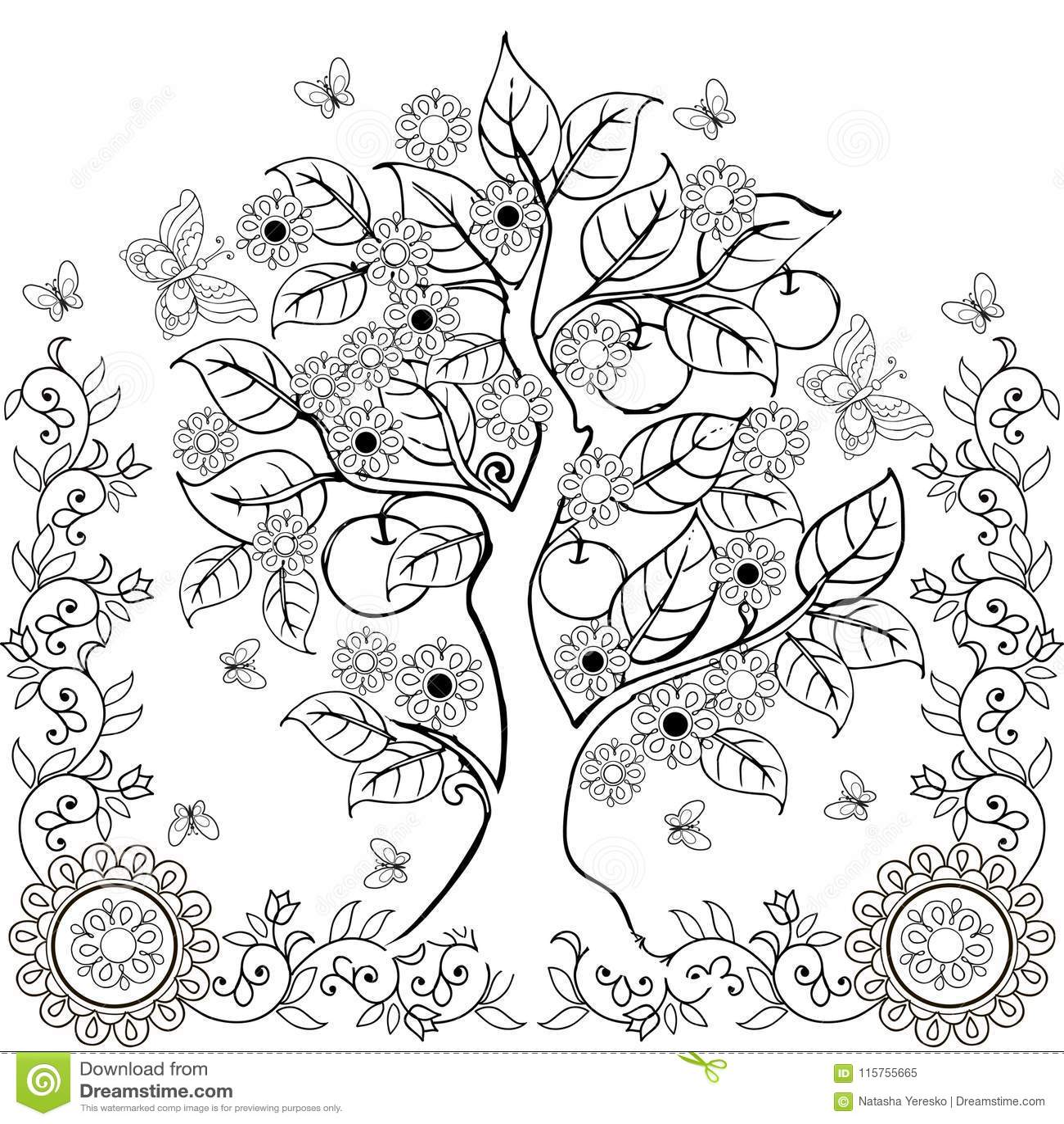 Il disegno passa l albero con i fiori e le mele Sorgente Libri da colorare adulti