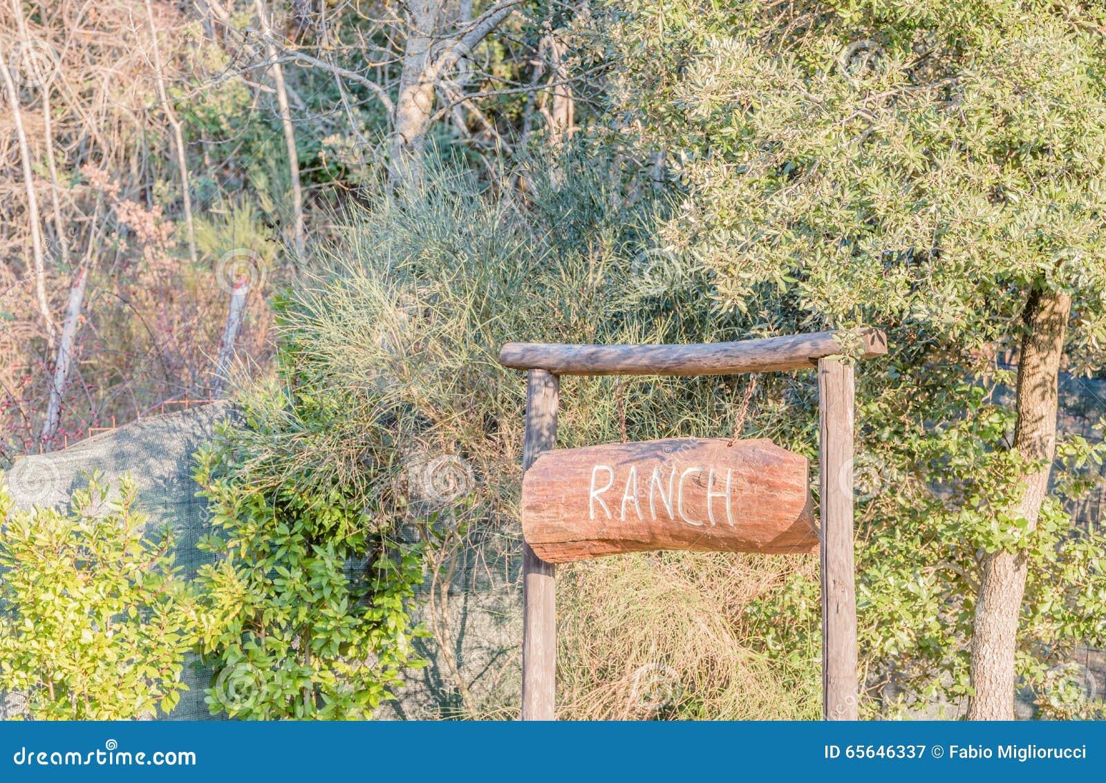 Il enseigne le ranch sur le bois