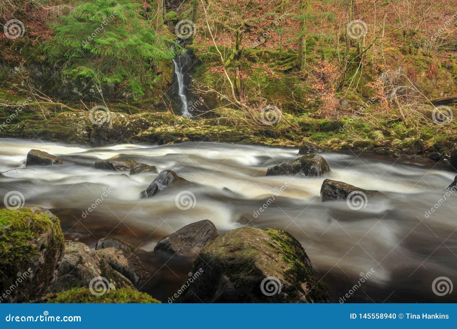 Il fiume Tay all eremo, Dunkeld in Scozia