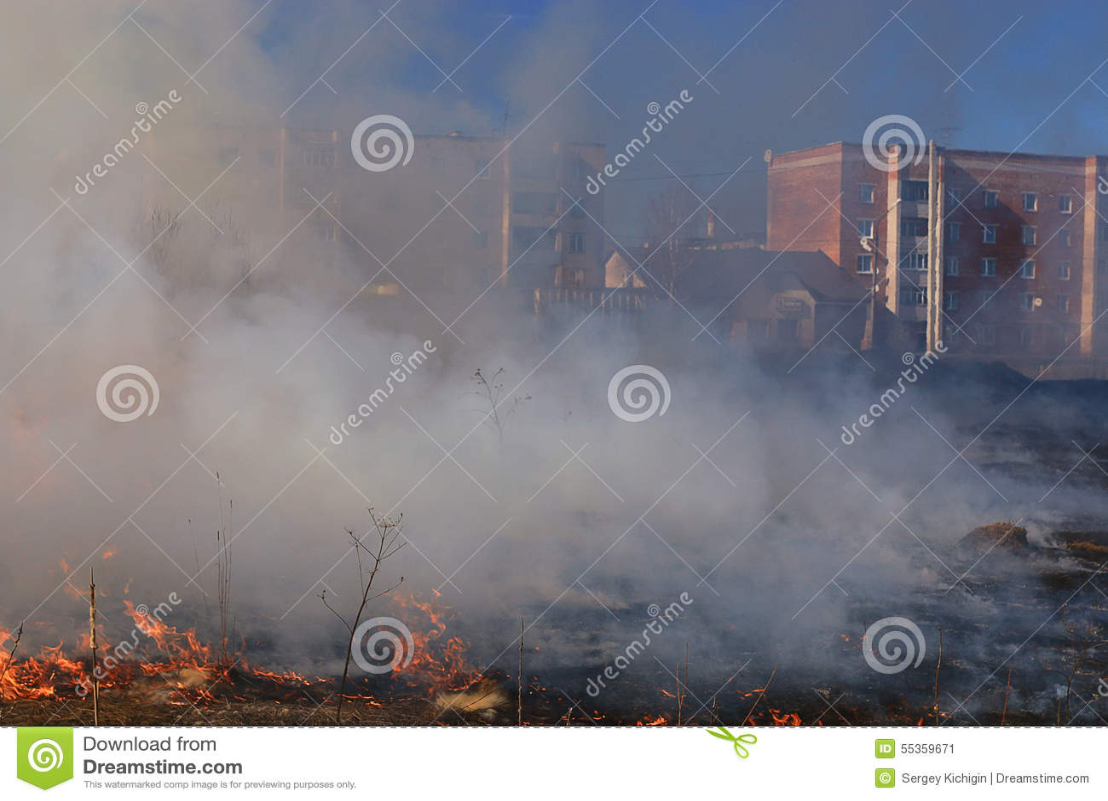 Il fuoco brucia l erba