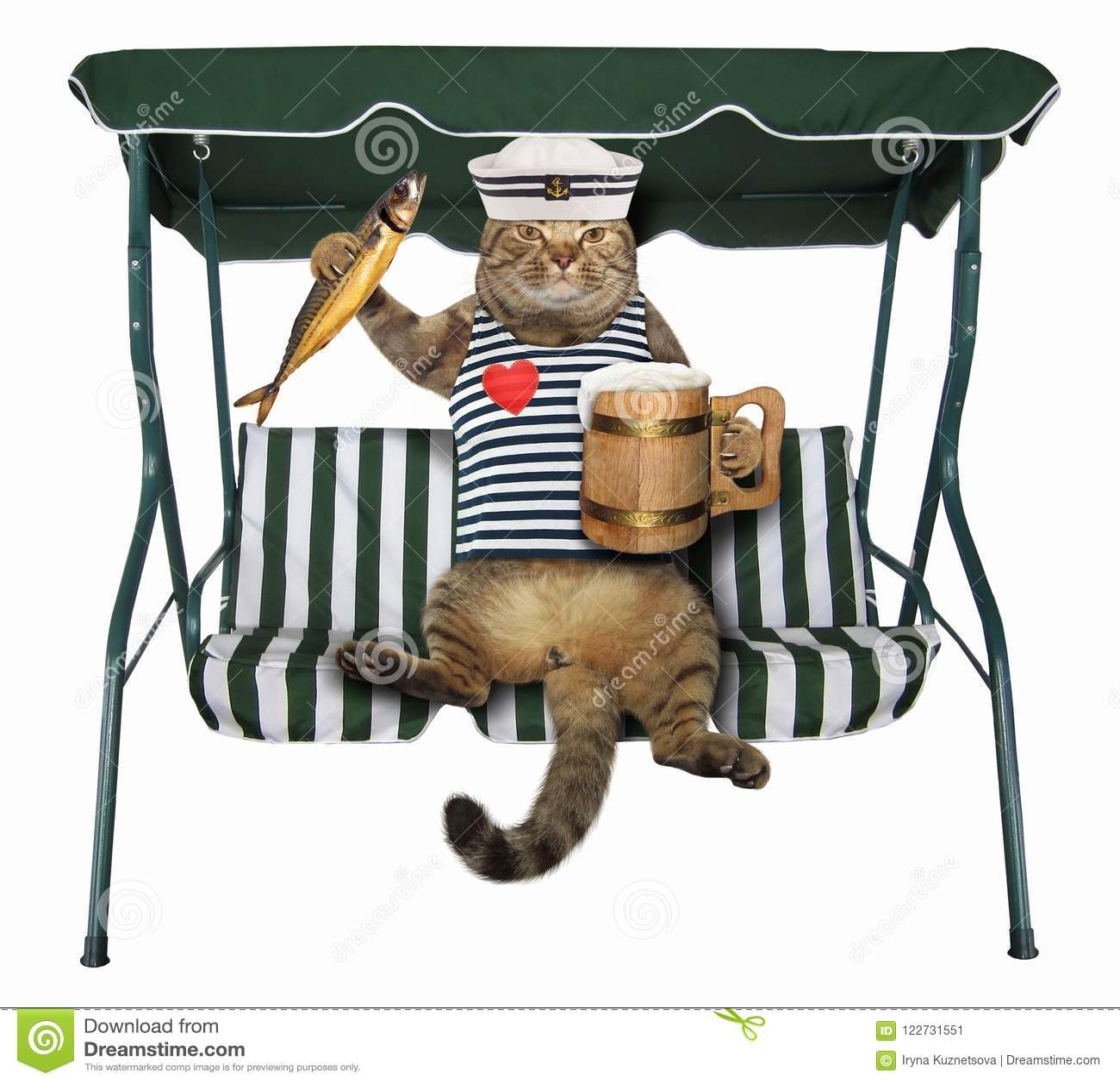 Il gatto con la birra è su un banco dell oscillazione