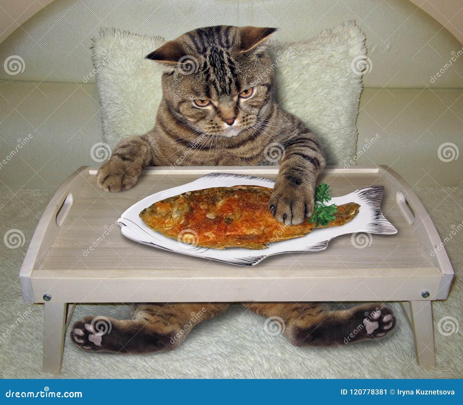 Il gatto mangia il pesce fritto sul letto