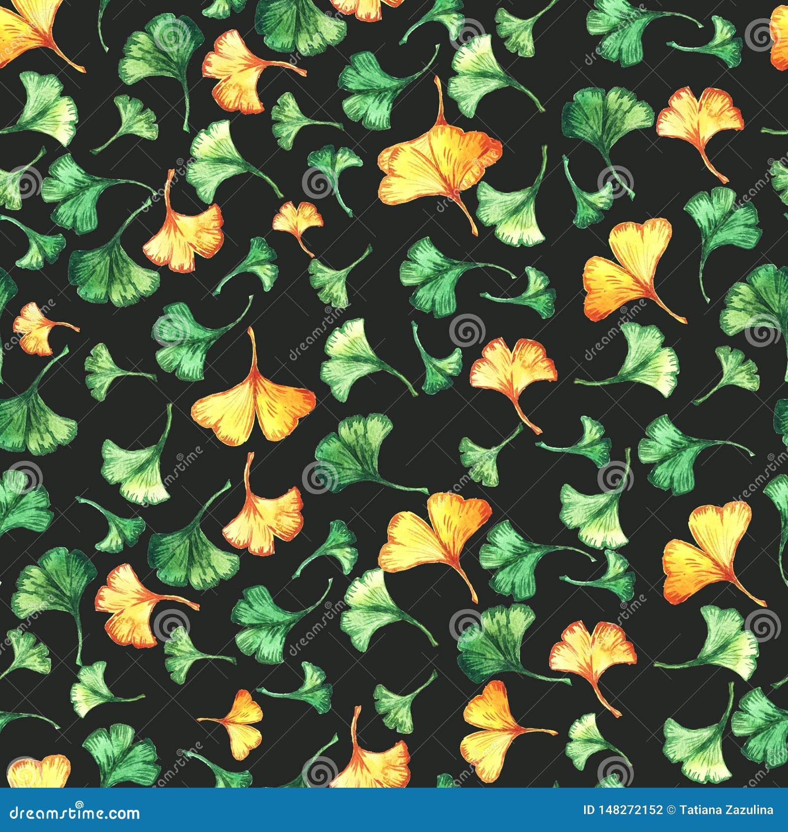 Il ginkgo biloba lascia ad acquerello floreale il modello senza cuciture su backround nero Pianta dell albero conosciuta come il