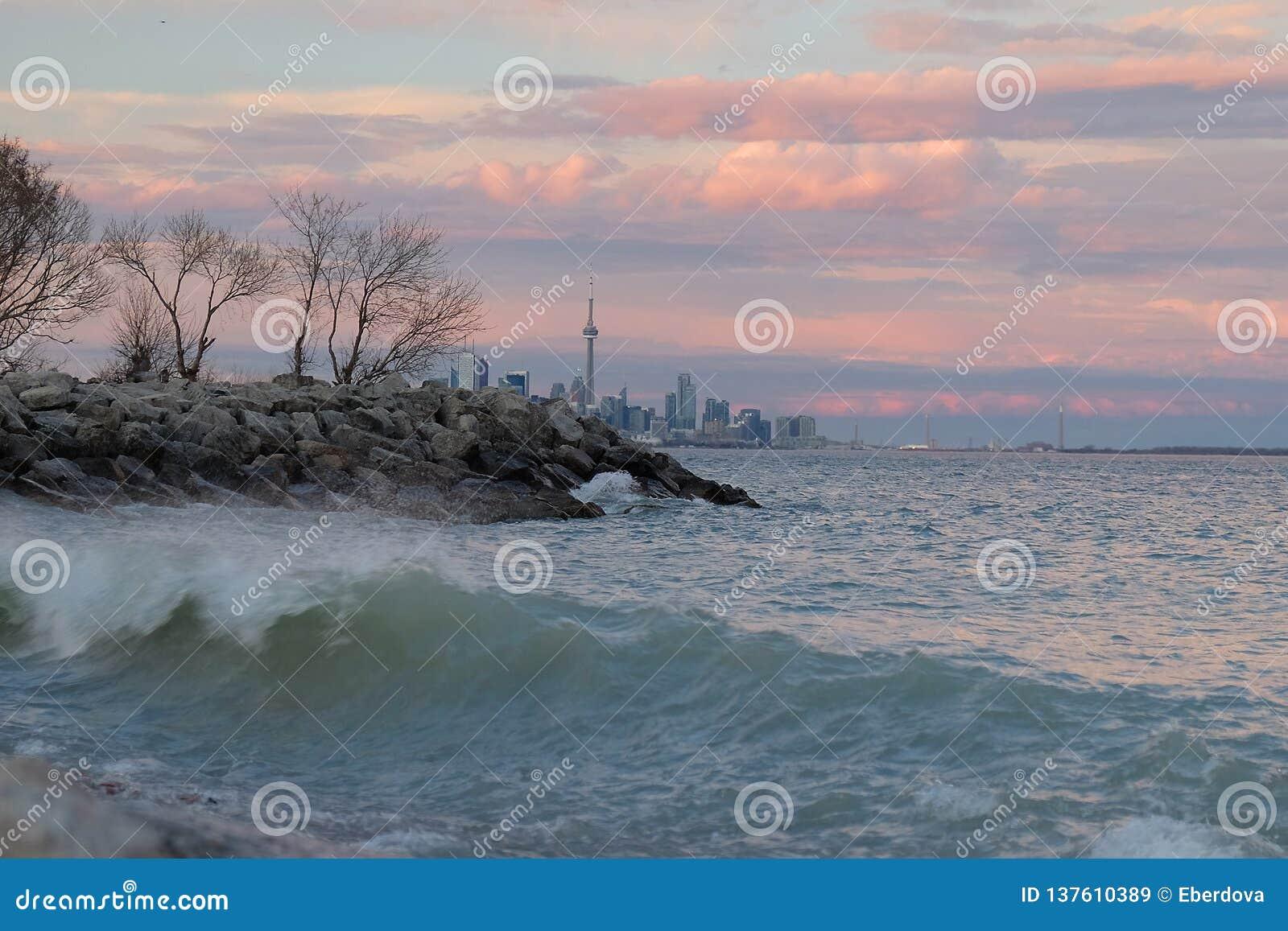 Il lago Ontario al tramonto con l orizzonte della città di Toronto e la torre del CN nei precedenti