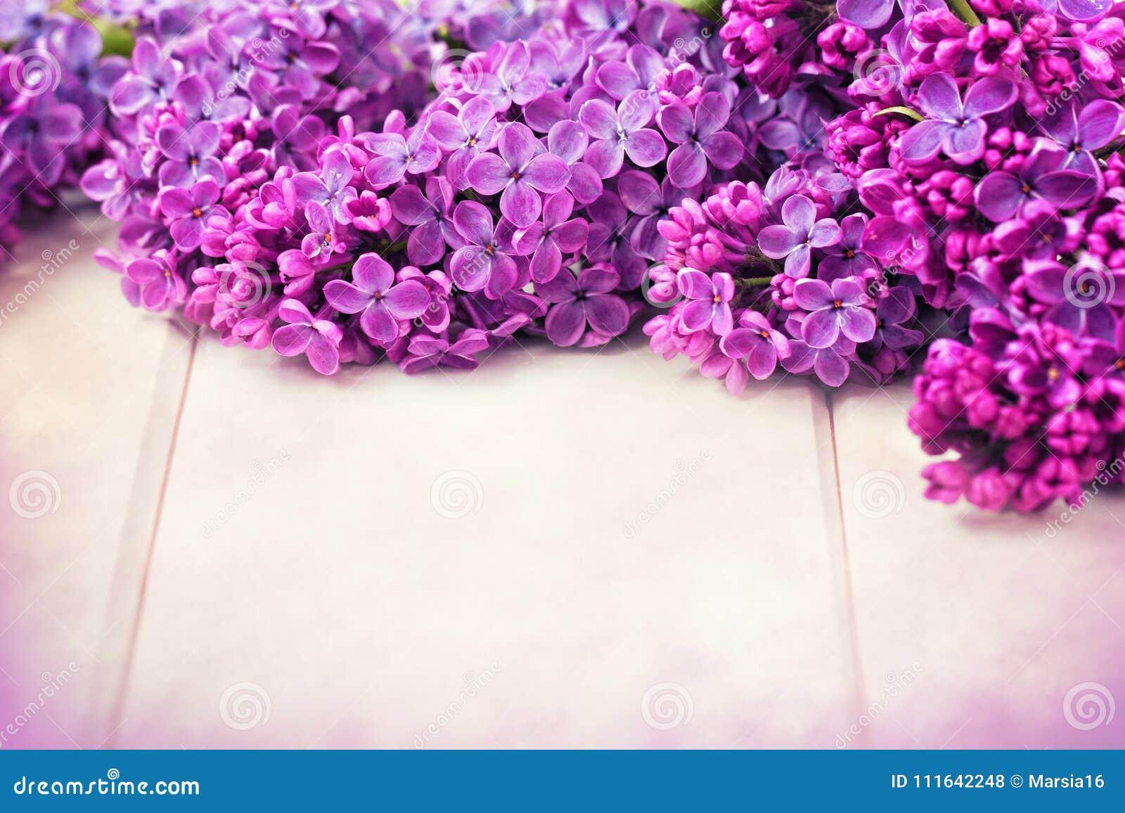 Il lillà fiorisce il mazzo