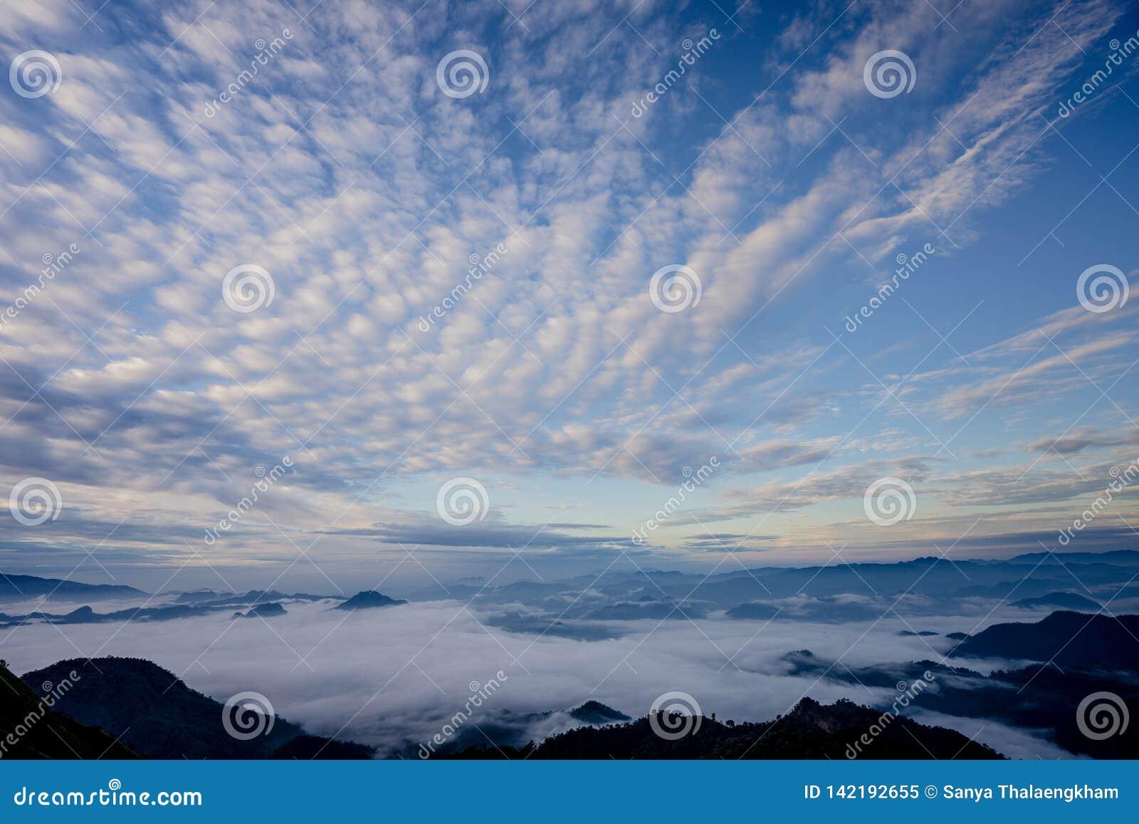 Il mare di nebbia con le foreste e la valle delle montagne, bello nel paesaggio della natura, Doi Thule, provincia di Tak, Tailan