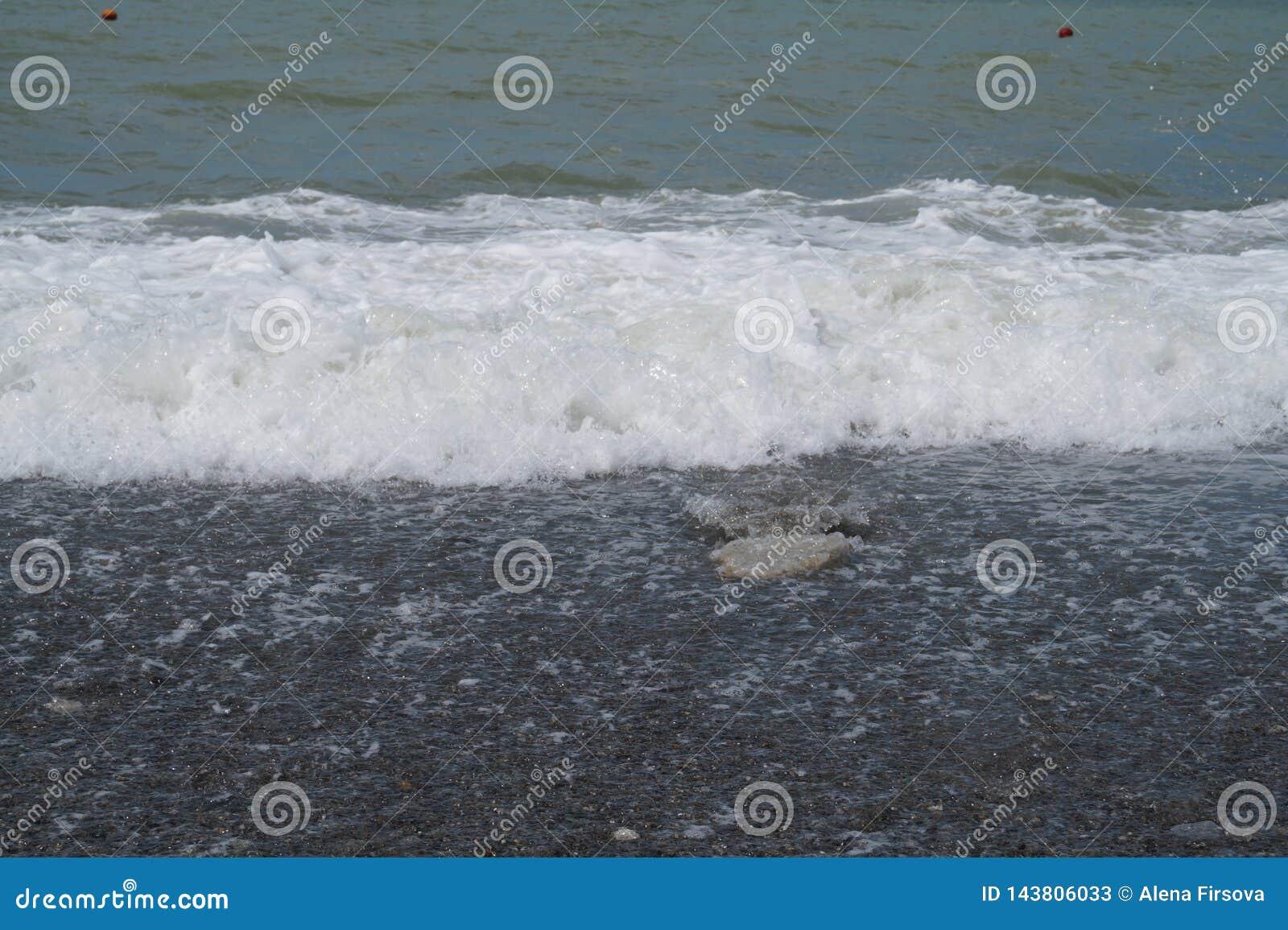 Il mare e la spiaggia in Soci