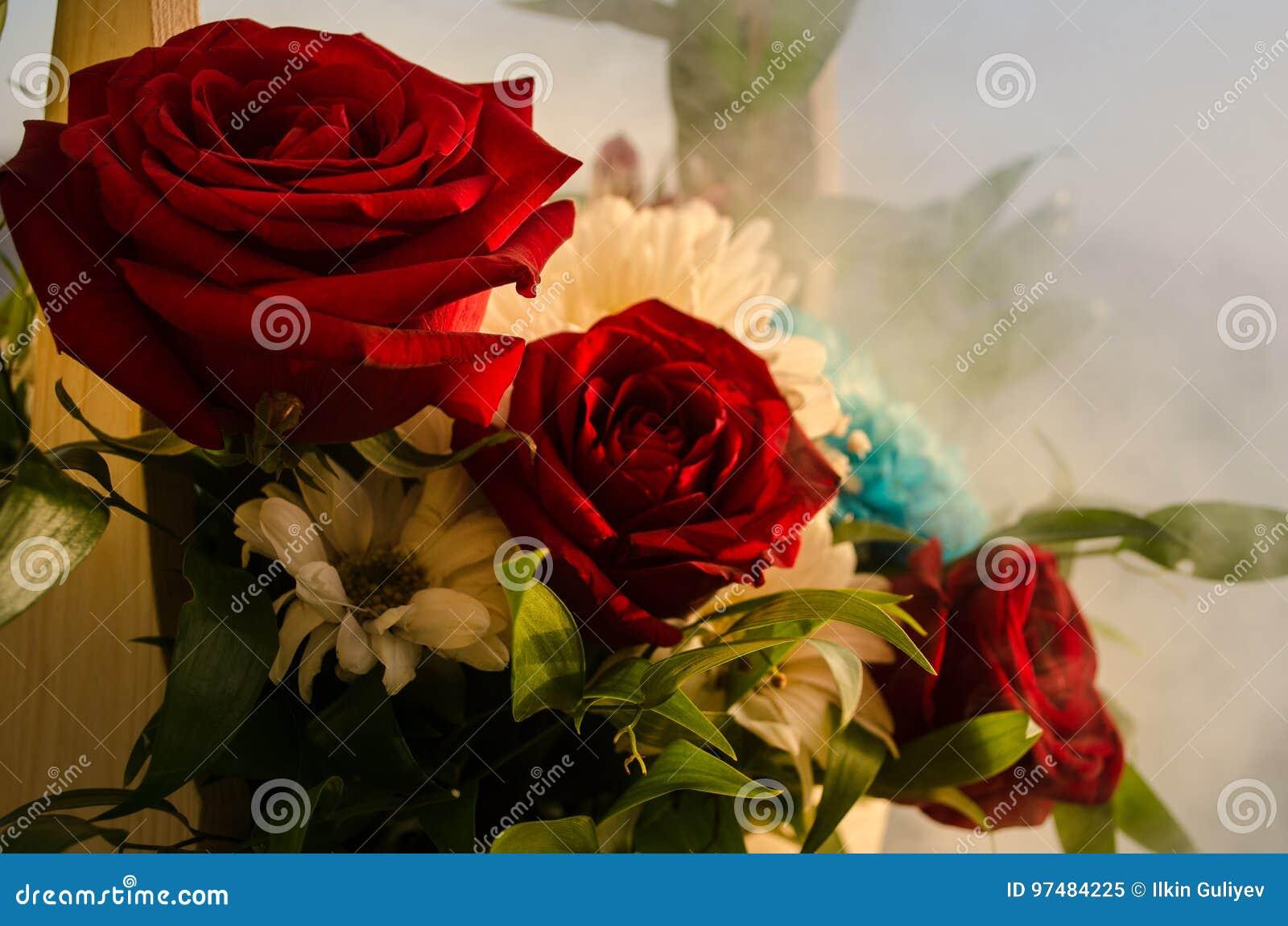 Il mazzo delle rose si chiude in su Priorità bassa vaga Fuoco selettivo Fondo floreale della cartolina d auguri o del modello Maz