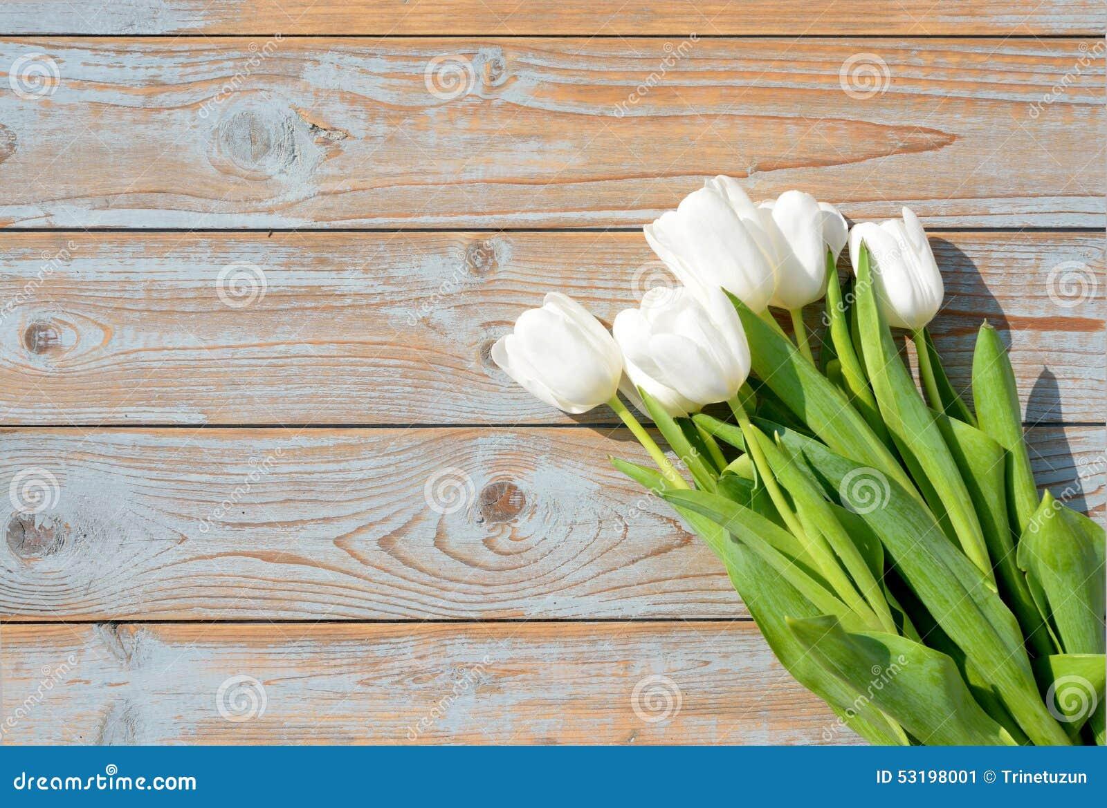 Immagini di tulipani bianchi hu19 pineglen for Costruire un mazzo di portico
