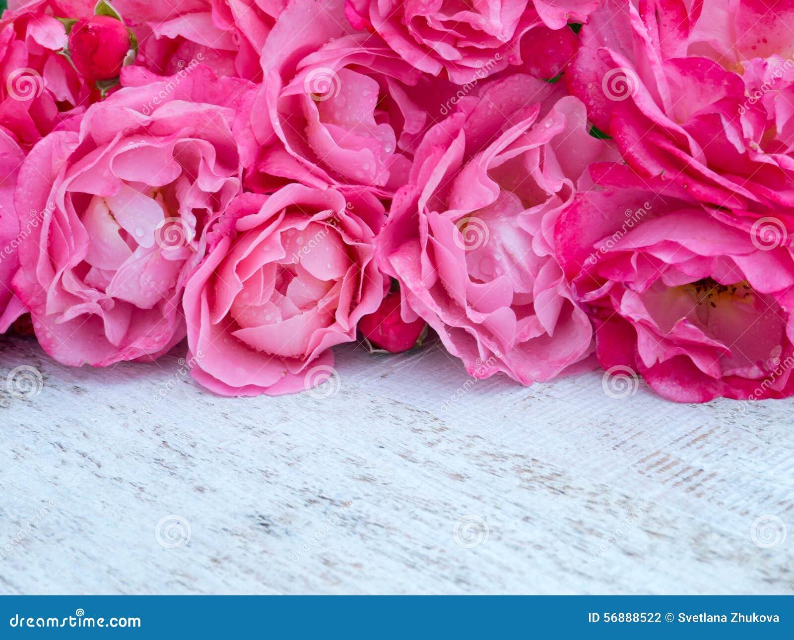 Il mazzo rosa delle rose sul bianco rustico ha dipinto il fondo