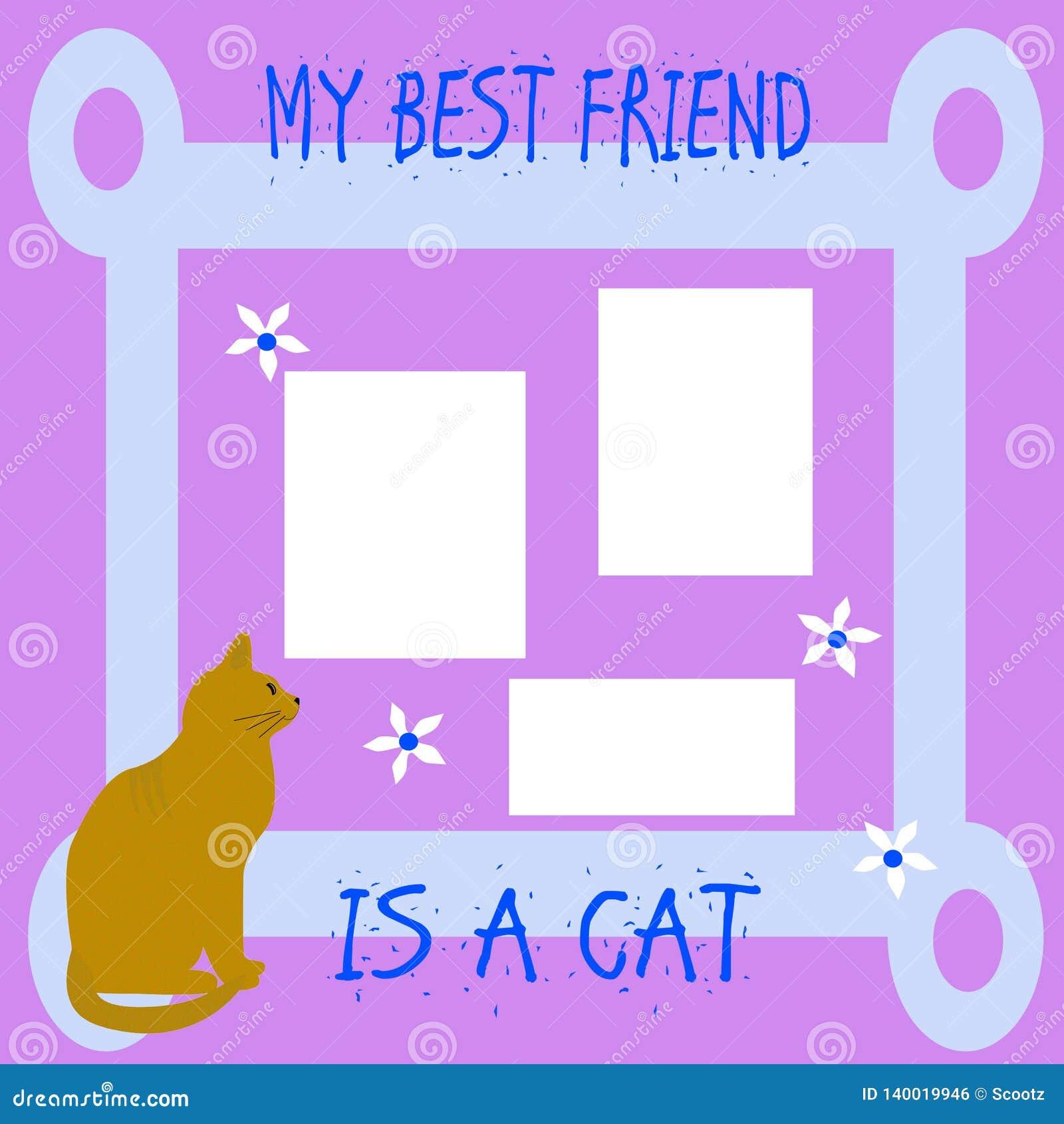 Il mio amico il gatto