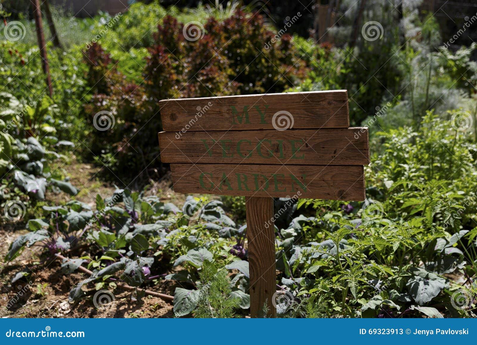 Il mio giardino youtube