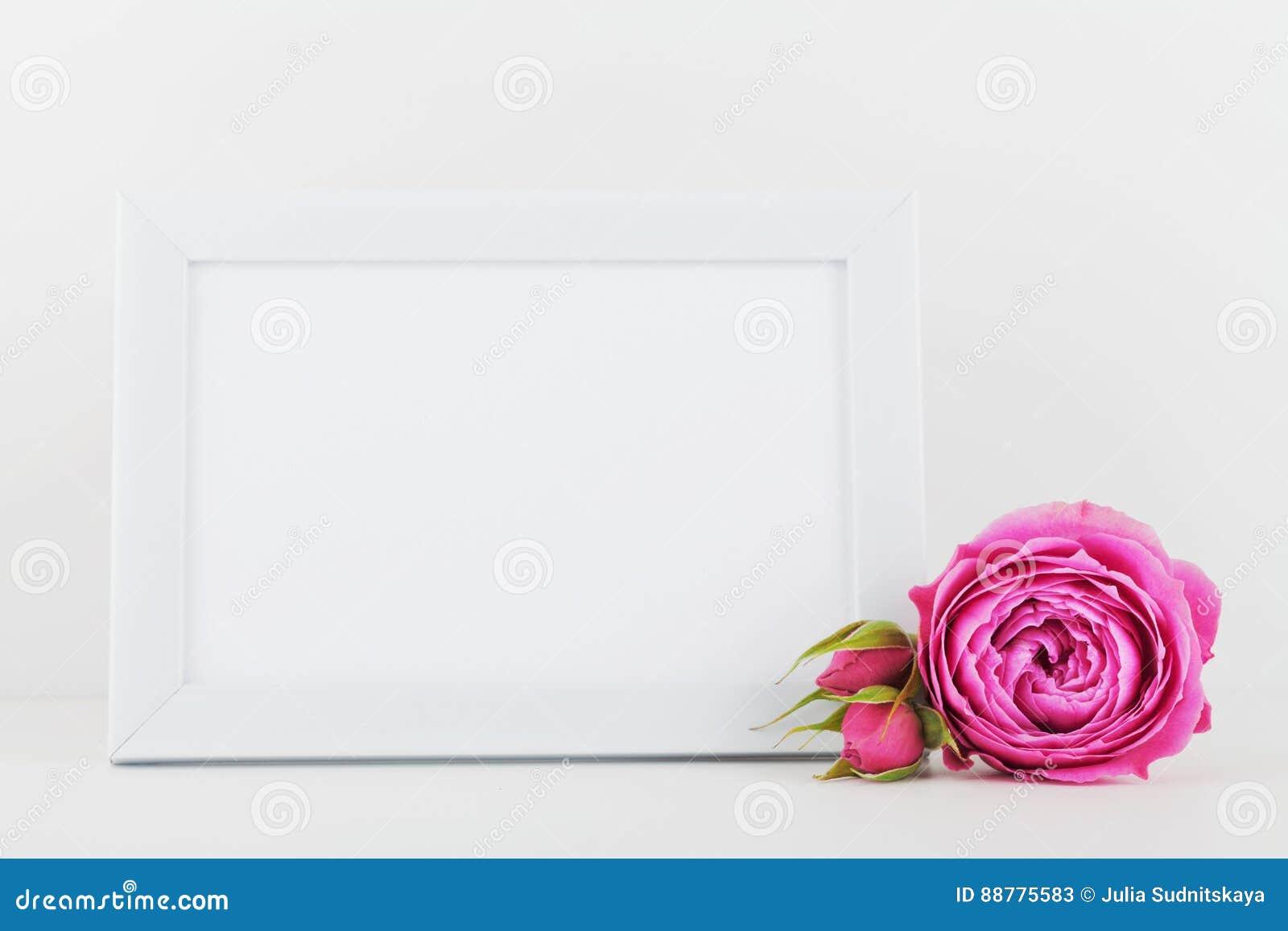 Il modello del fiore rosa decorato della cornice sullo - Modello di base del fiore ...