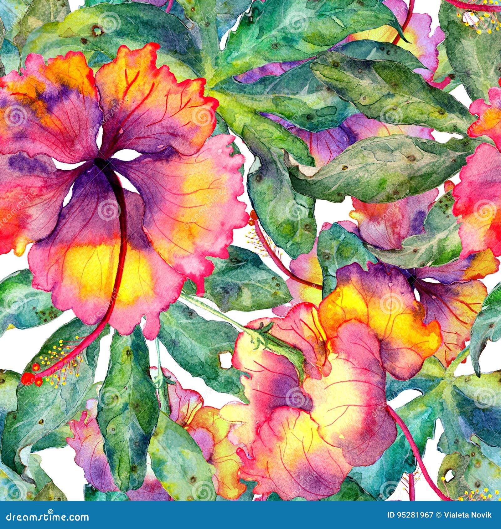 Il modello esotico dell acquerello senza cuciture disegnato a mano con le foglie e l ibisco della passiflora fiorisce