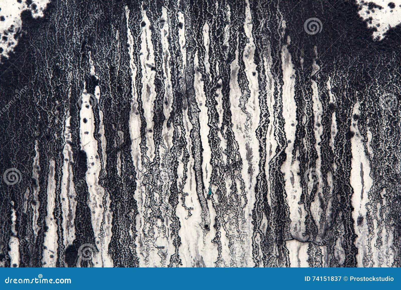 Pittura Cemento Design : Il muro di cemento bianco con pittura nera gocciola fondo astratto