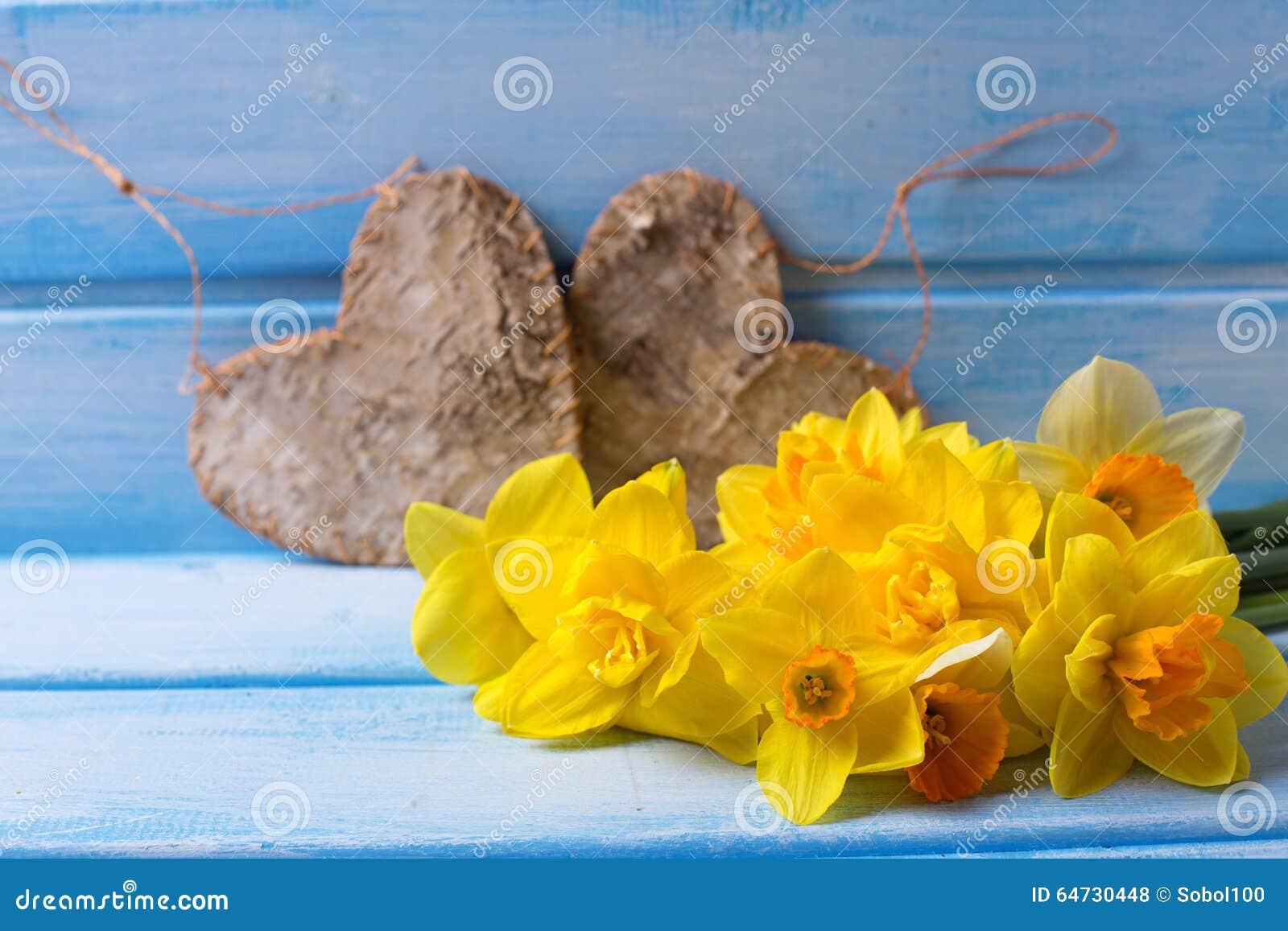 Il narciso giallo luminoso ed i cuori decorativi sul blu hanno dipinto w
