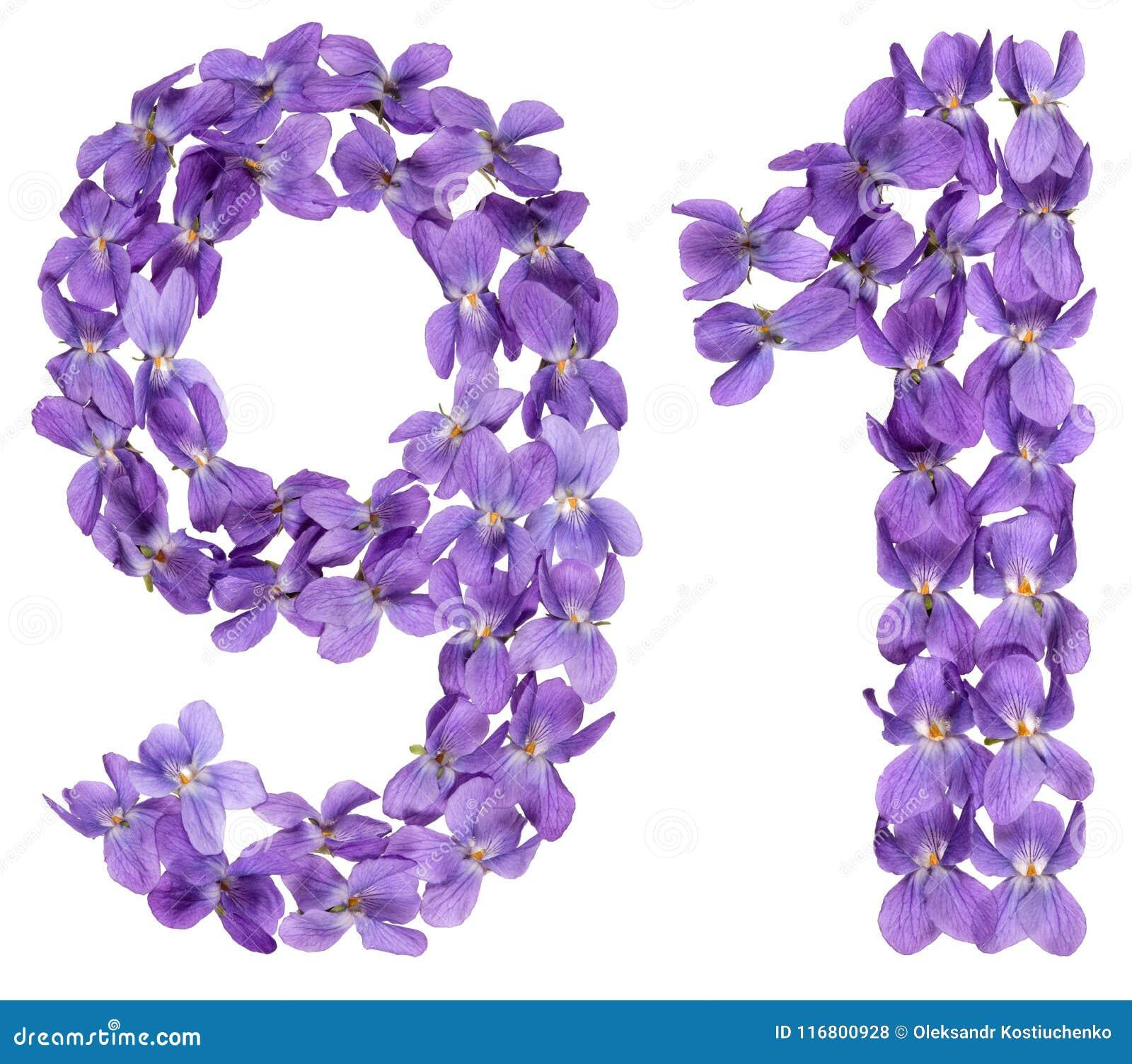 Il numero arabo 91, novanta uno, dai fiori della viola, ha isolato la o