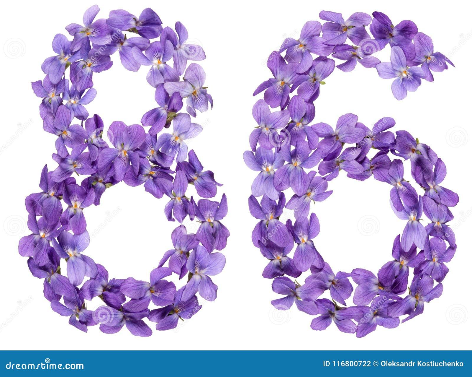Il numero arabo 86, ottantasei, dai fiori della viola, ha isolato la o