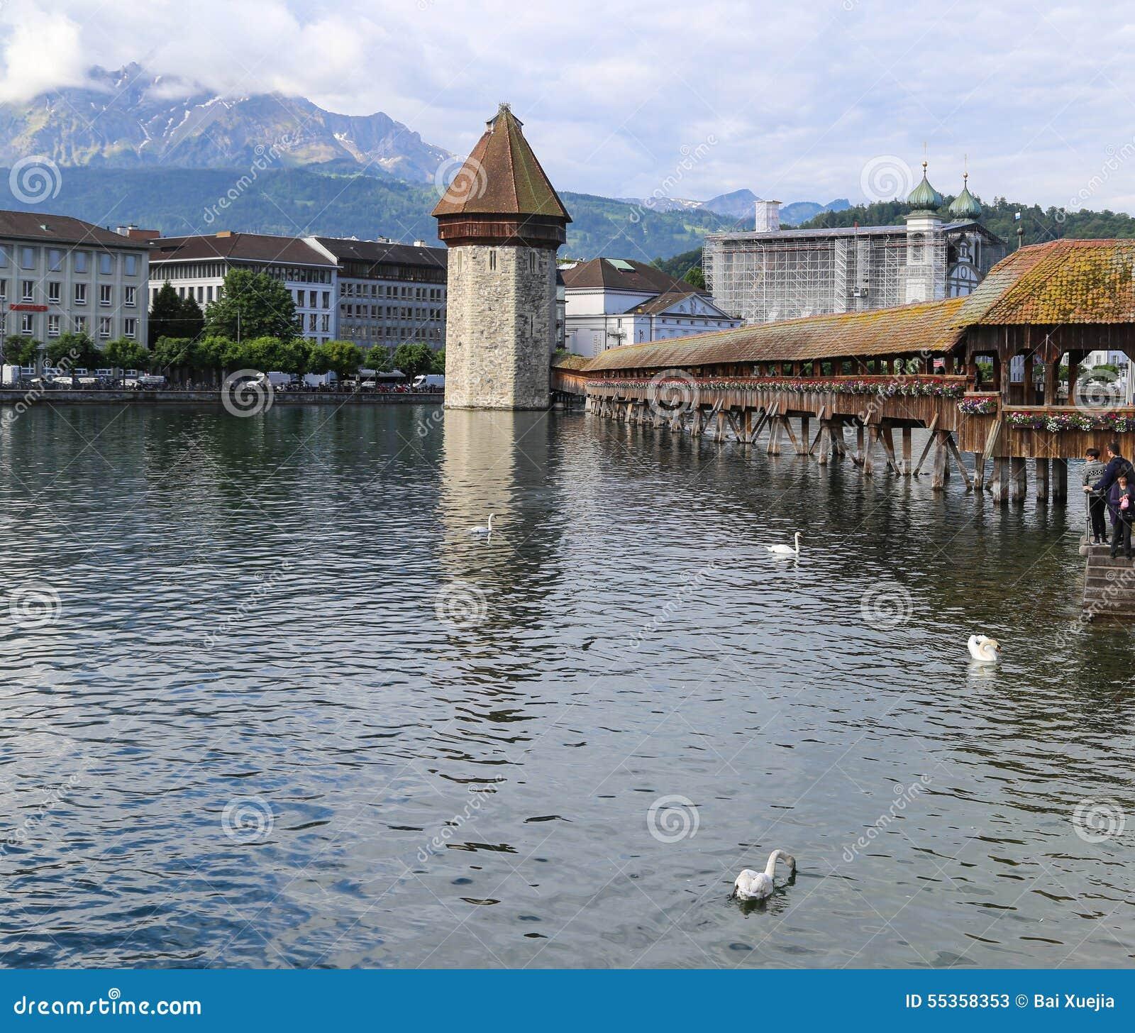 Il paesaggio in erba medica del lago, Svizzera