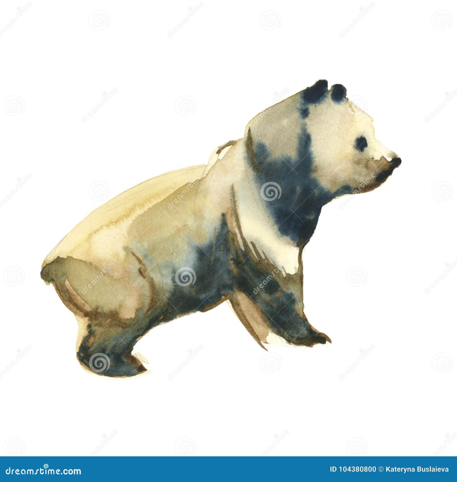 Giant panda bear foto royalty free immagini immagini e archivi