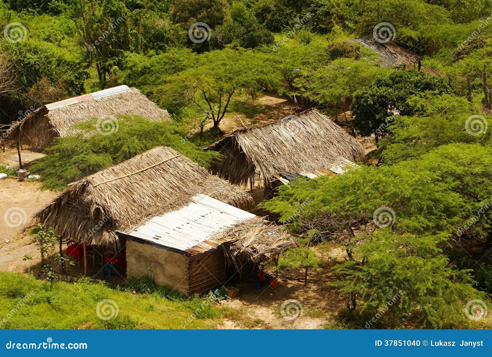 Il Perù, paesaggio peruviano dell Amazonas. Lo stabilimento indiano tipico delle tribù del presente della foto in Amazon