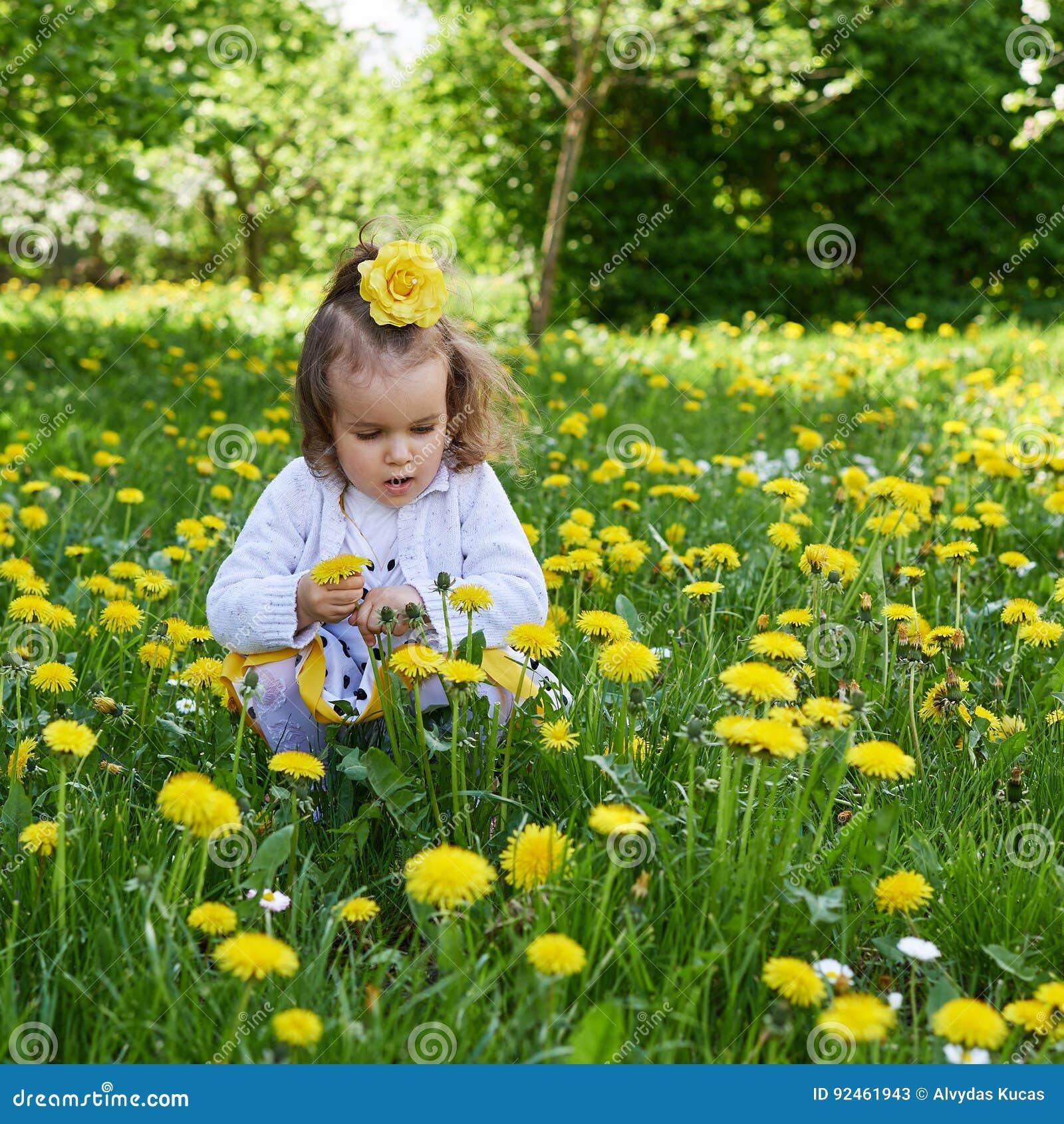 Il prato della bambina riunisce il dente di leone giallo