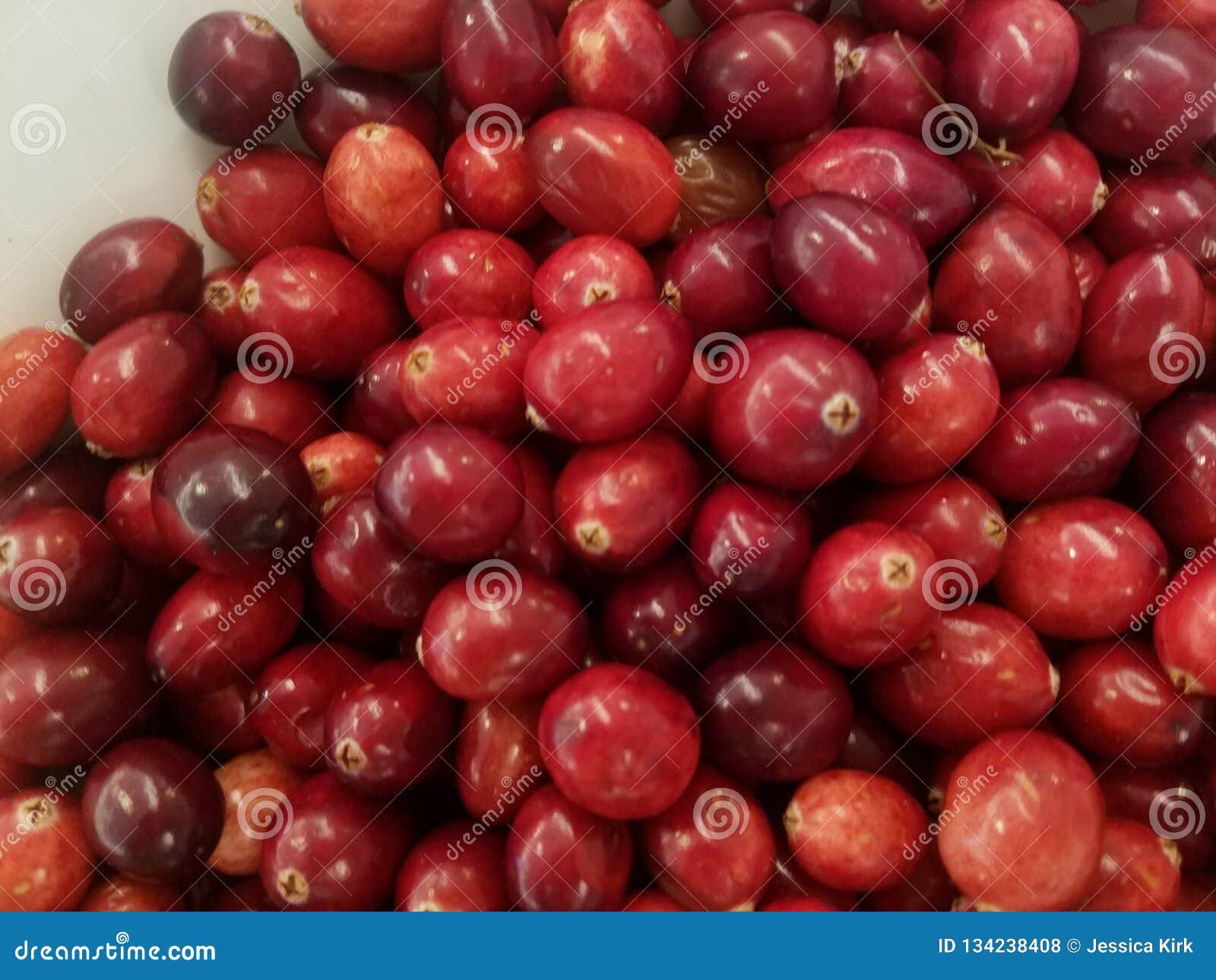 Il primo piano del piatto bianco del cranberriesbin rosso fresco, ottiene i vostri antiossidanti