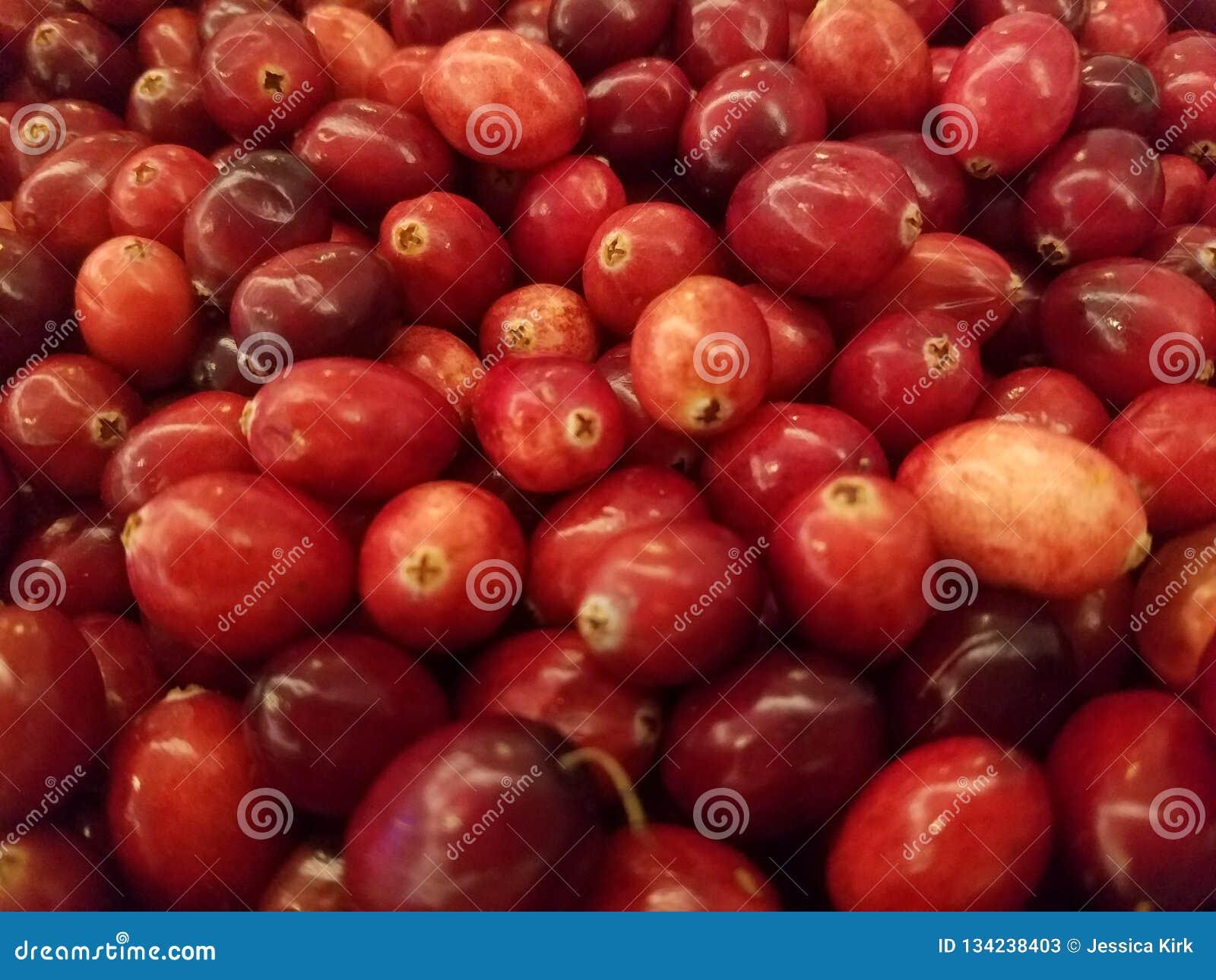 Il primo piano rosso fresco dei mirtilli rossi, ottiene i vostri antiossidanti