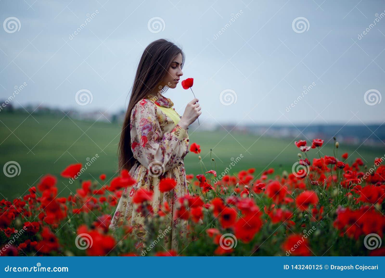 Il profilo di bella ragazza dai capelli lunghi in un vestito floreale delicato raccoglie ed odora i papaveri nel campo