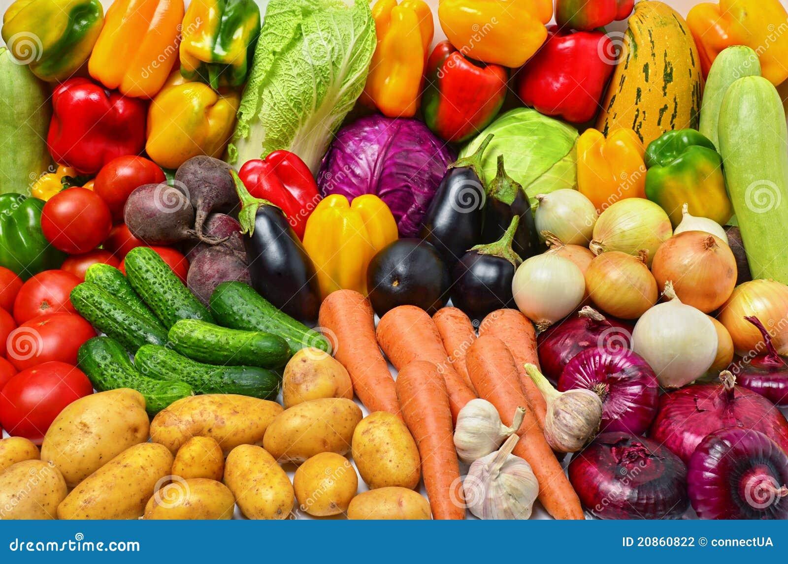 Il raccolto delle verdure