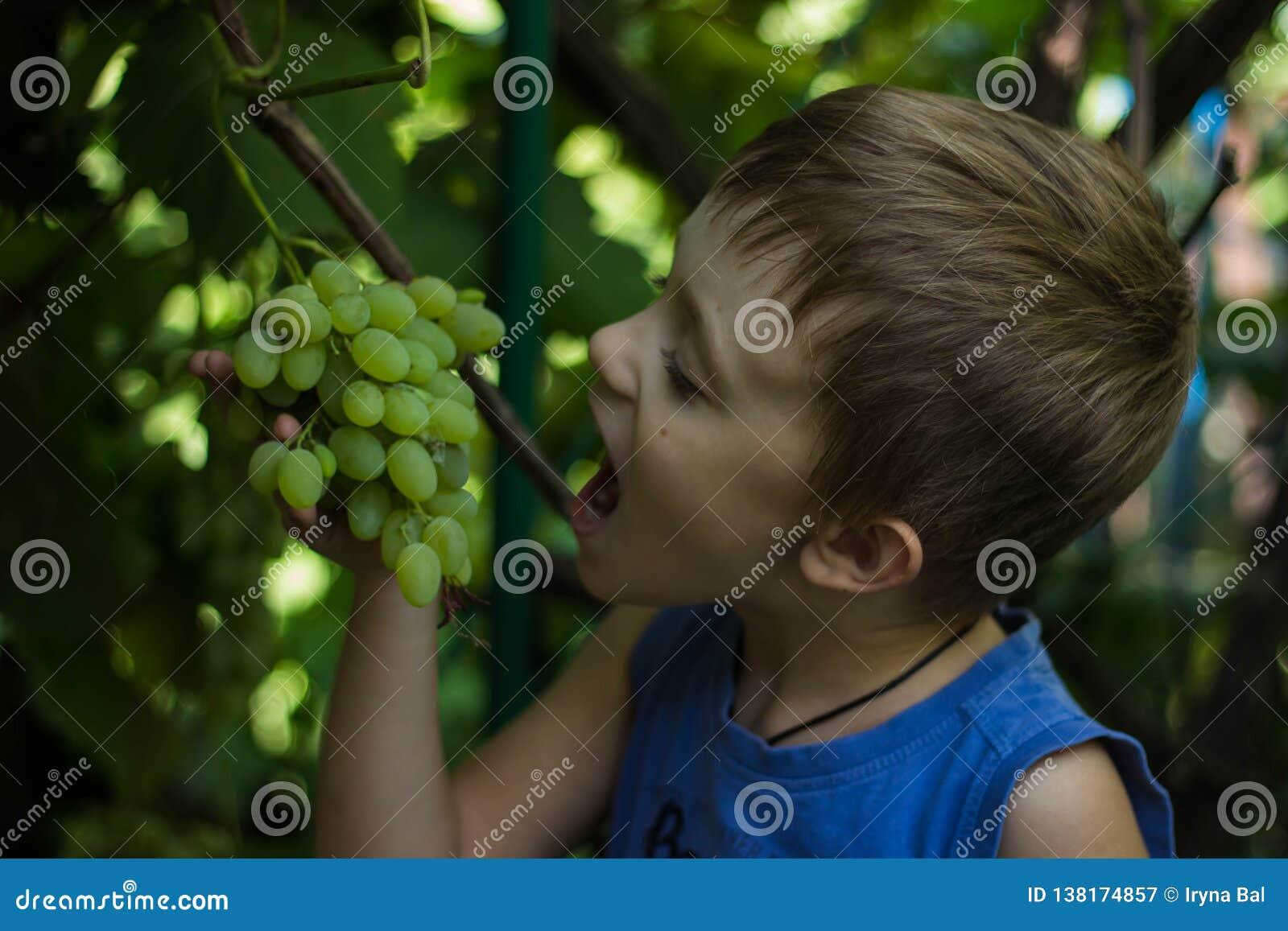 Il ragazzo morde fuori un pezzo di mazzo di uva