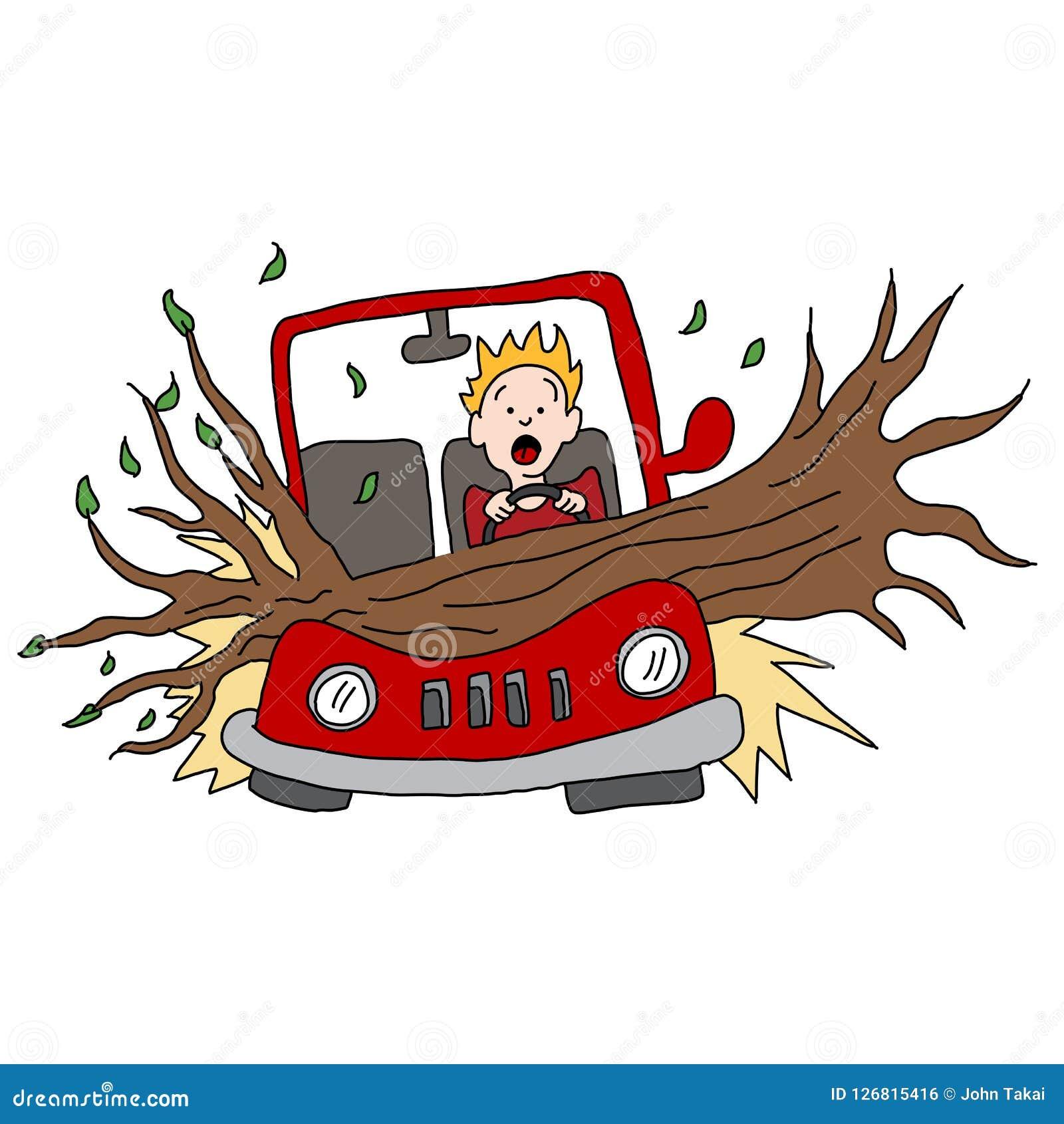 Il ramo di albero danneggia l automobile nella tempesta del vento