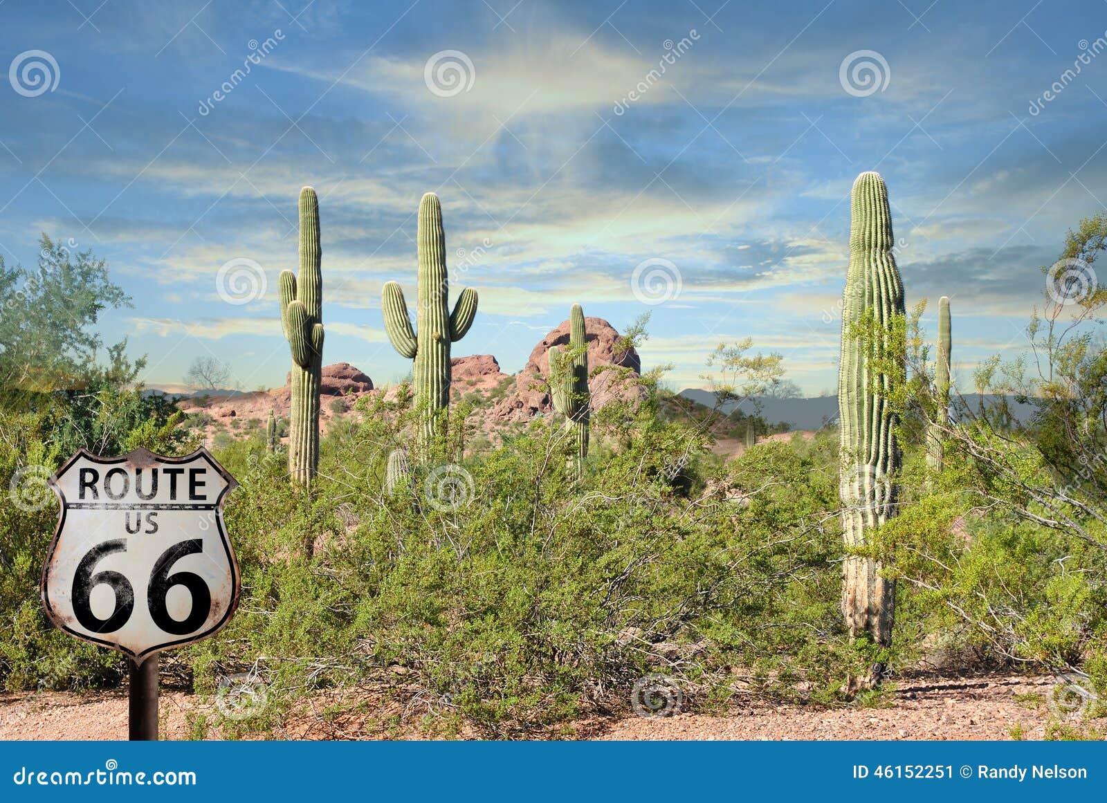 Il rosso favoloso del cactus del paesaggio di Route 66 oscilla il bello deserto dell Arizona del tramonto