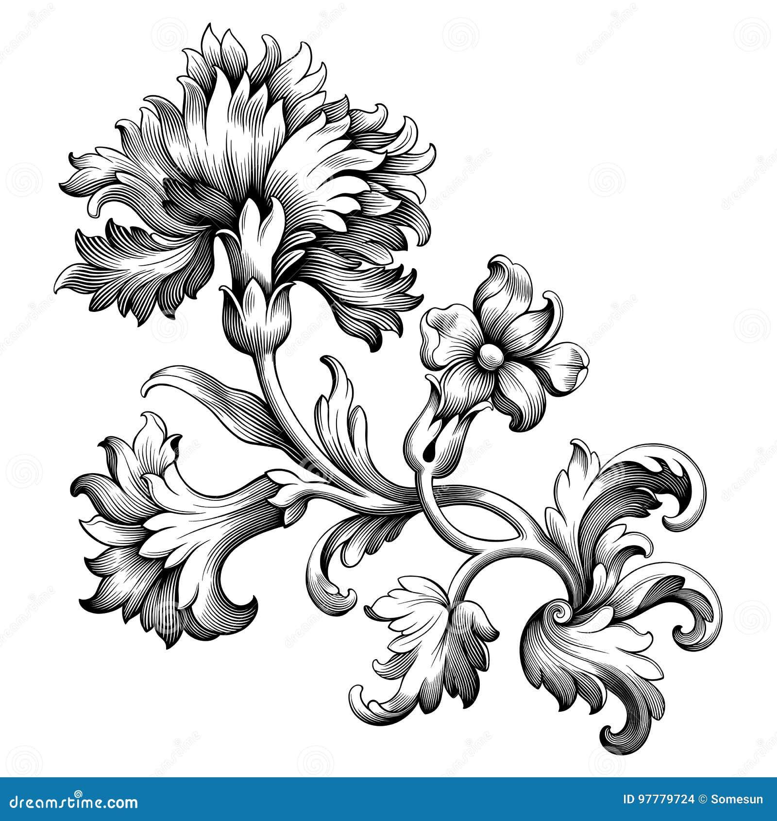 Il rotolo vittoriano barrocco d annata dell ornamento floreale del confine della struttura del fiore della peonia di Rosa ha inci