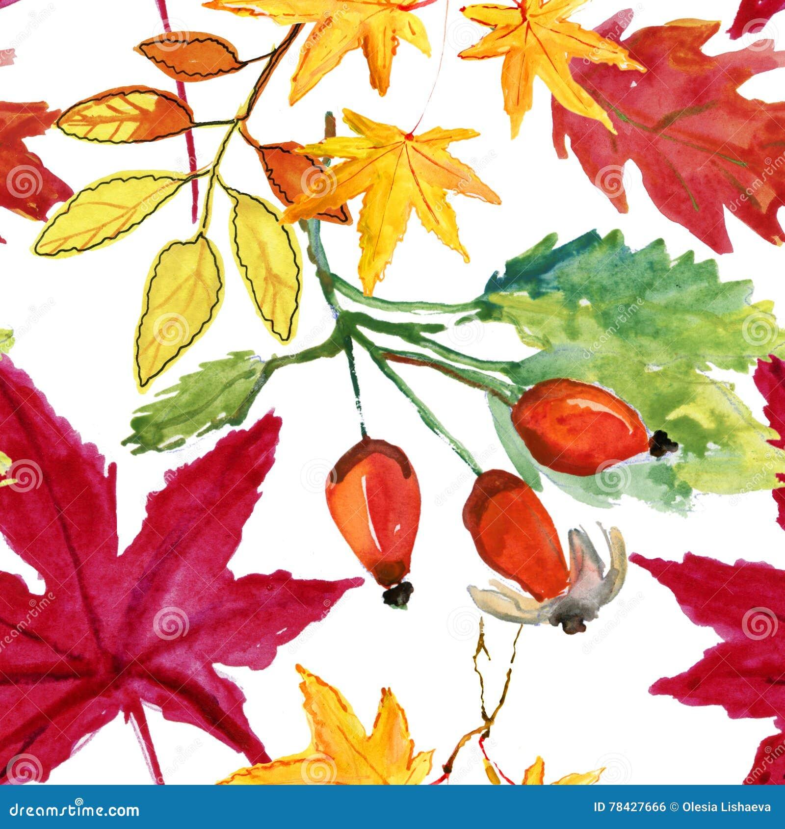 Il rovo dell acquerello modello senza cuciture fiorisce, delle bacche e delle foglie
