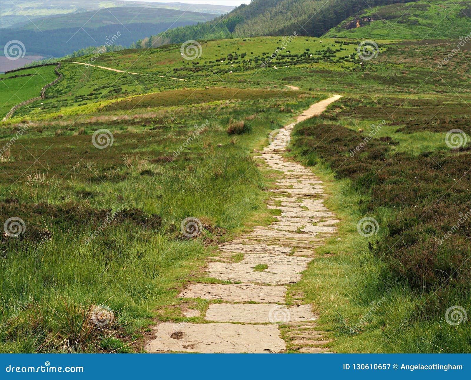 Il sentiero per pedoni a York del nord attracca il parco nazionale, Inghilterra