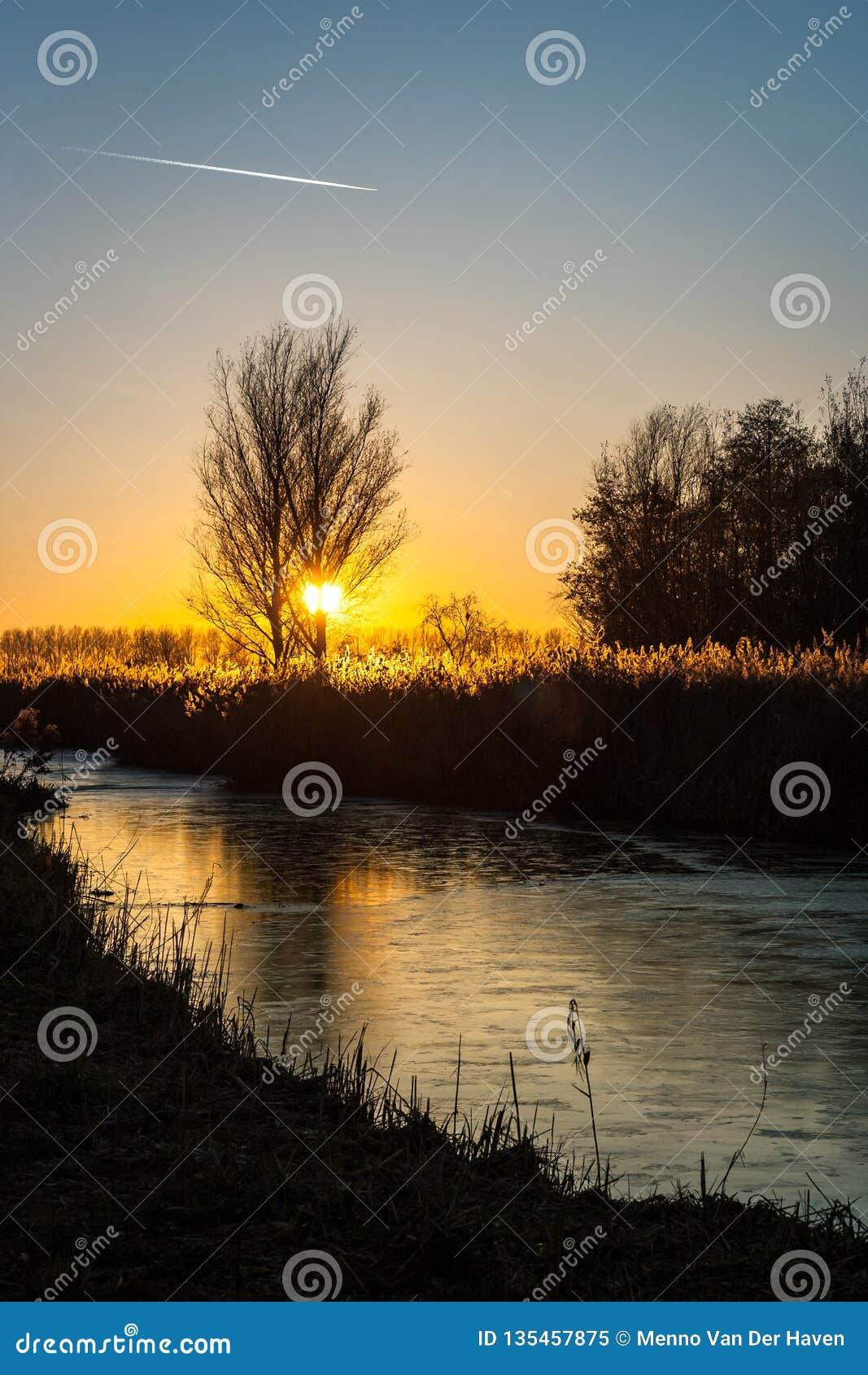 Il sole mette dietro un albero sopra la campagna olandese L acqua nel canale è congelata e riflette i colori del cielo