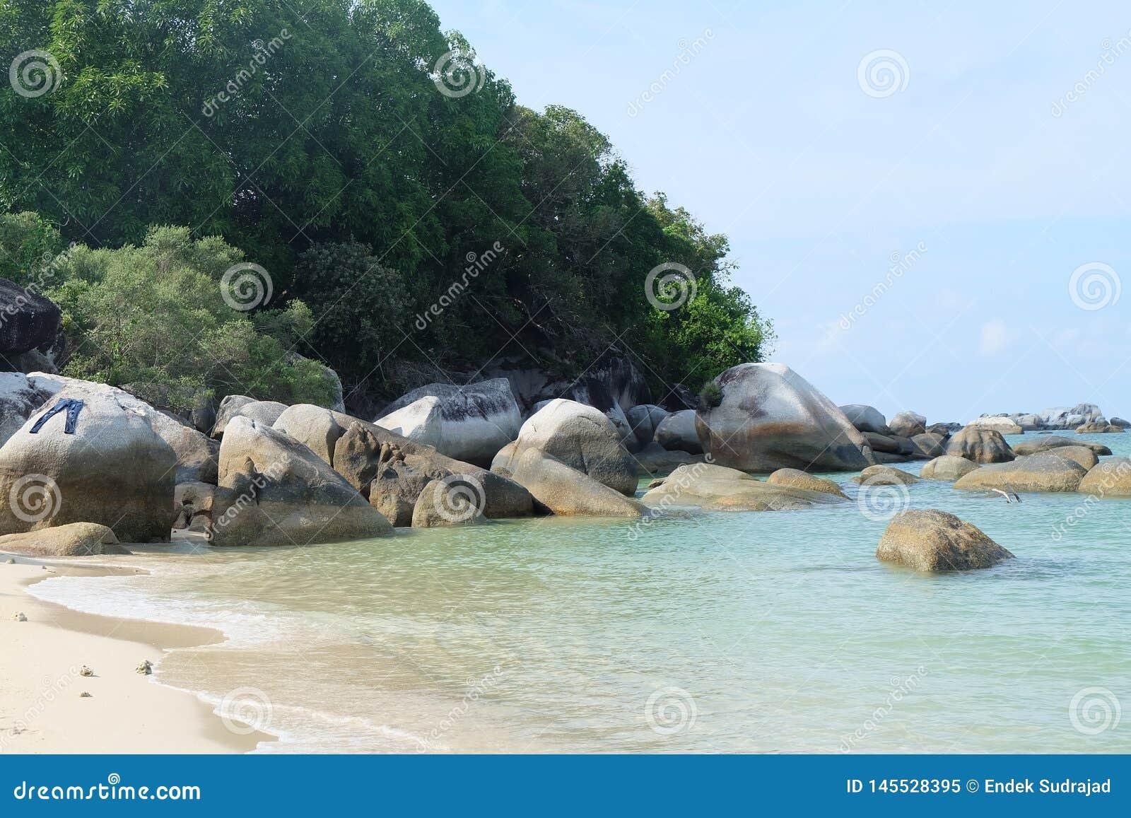 Ilha da terra da maravilha com praia bonita
